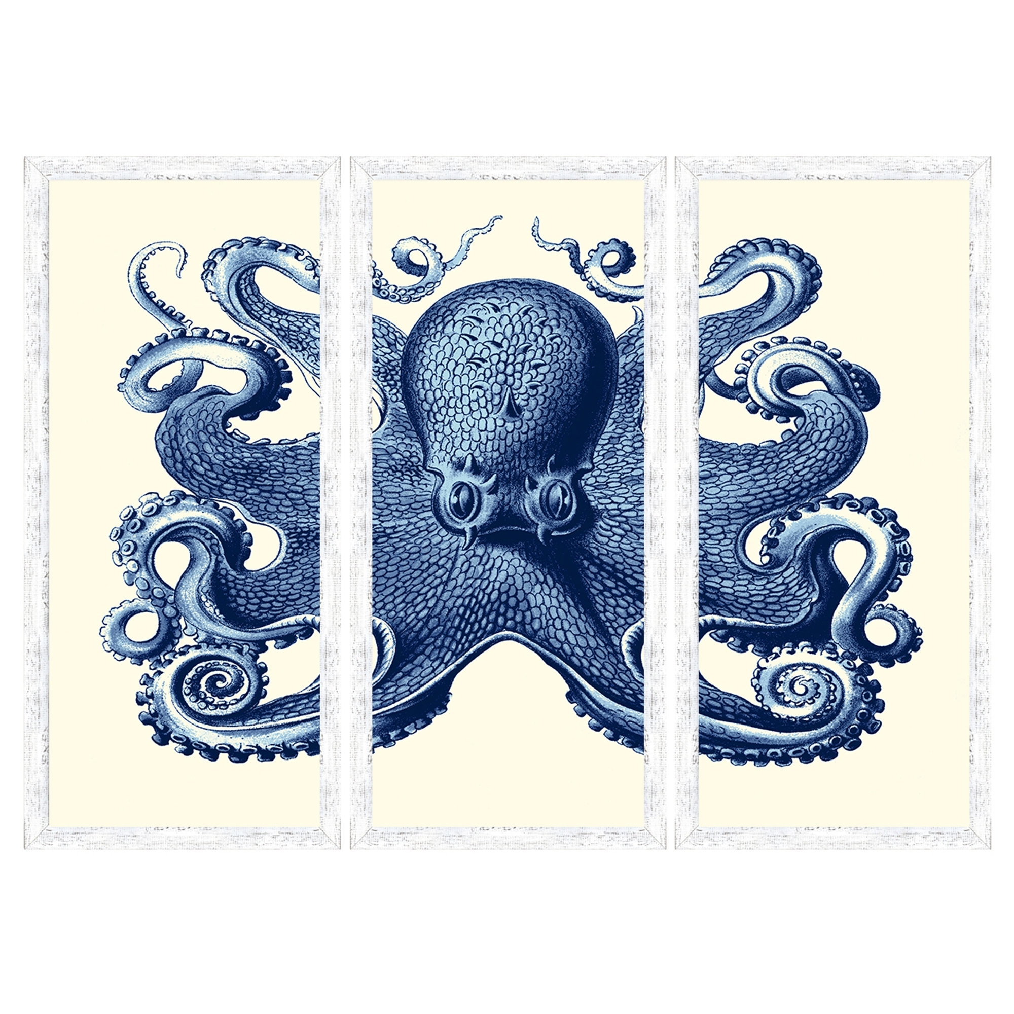 Birch Lane™ Blue Octopus Tryptic Wall Art & Reviews | Wayfair for Octopus Wall Art (Image 3 of 20)