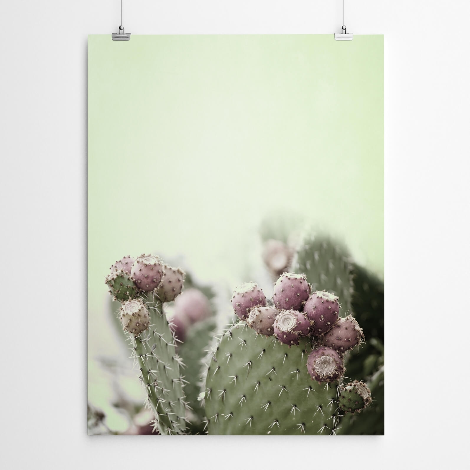Cactus Wall Art Print | Artworld Art World intended for Cactus Wall Art (Image 9 of 20)
