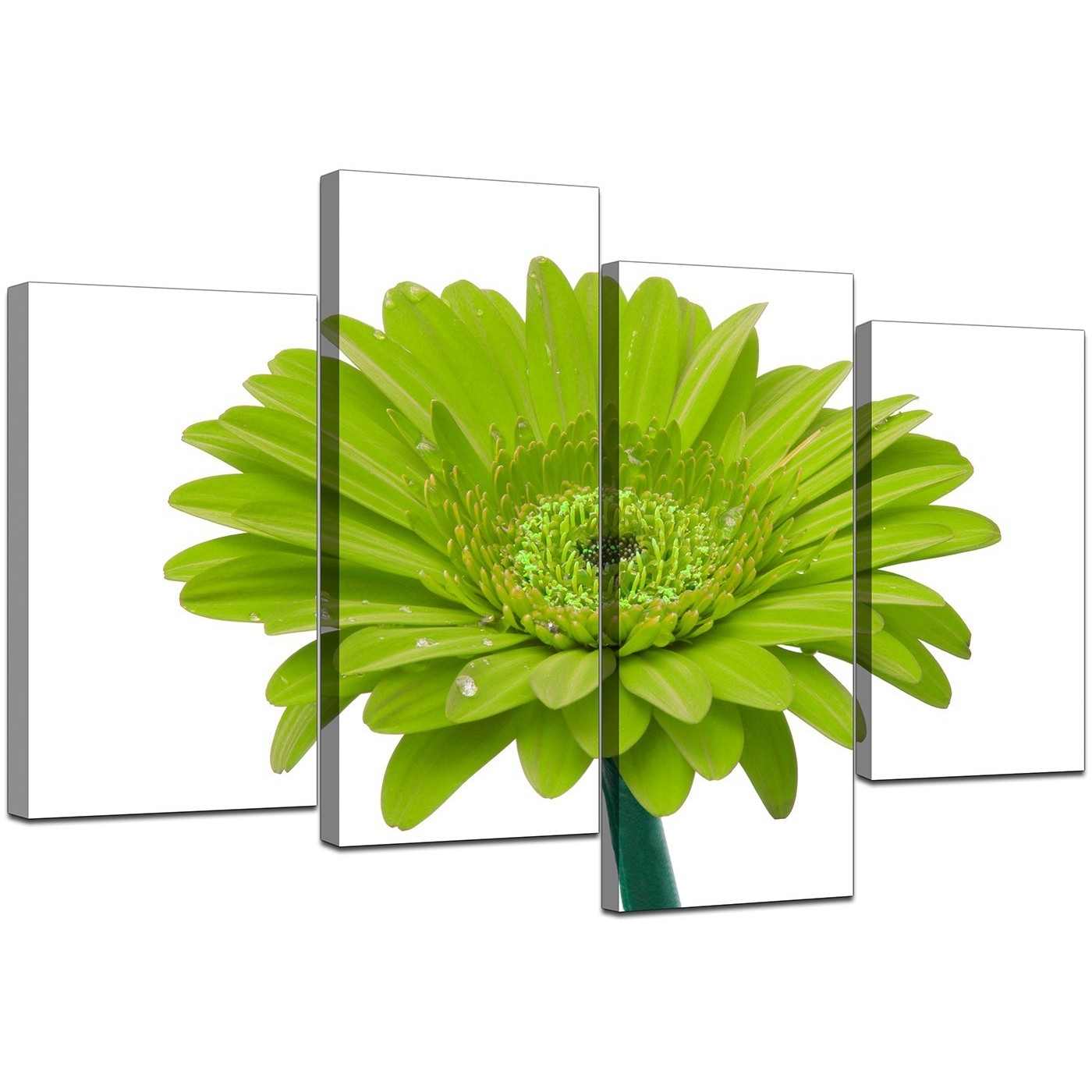 Canvas Wall Art Of Flower In Lime Green For Your Living Room in Green Wall Art (Image 5 of 20)