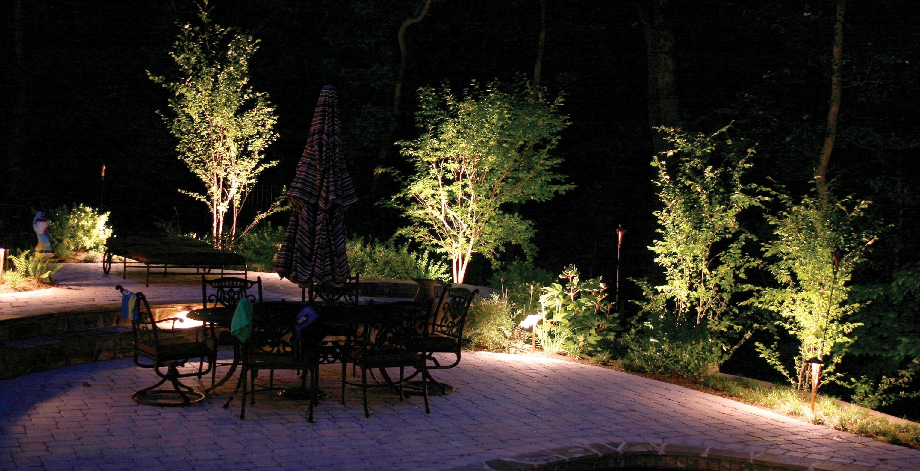 Charlotte-Trees-Light-At-Night-With-Outdoor-Lighting - Home Lighting within Outdoor Lanterns for Trees (Image 5 of 20)