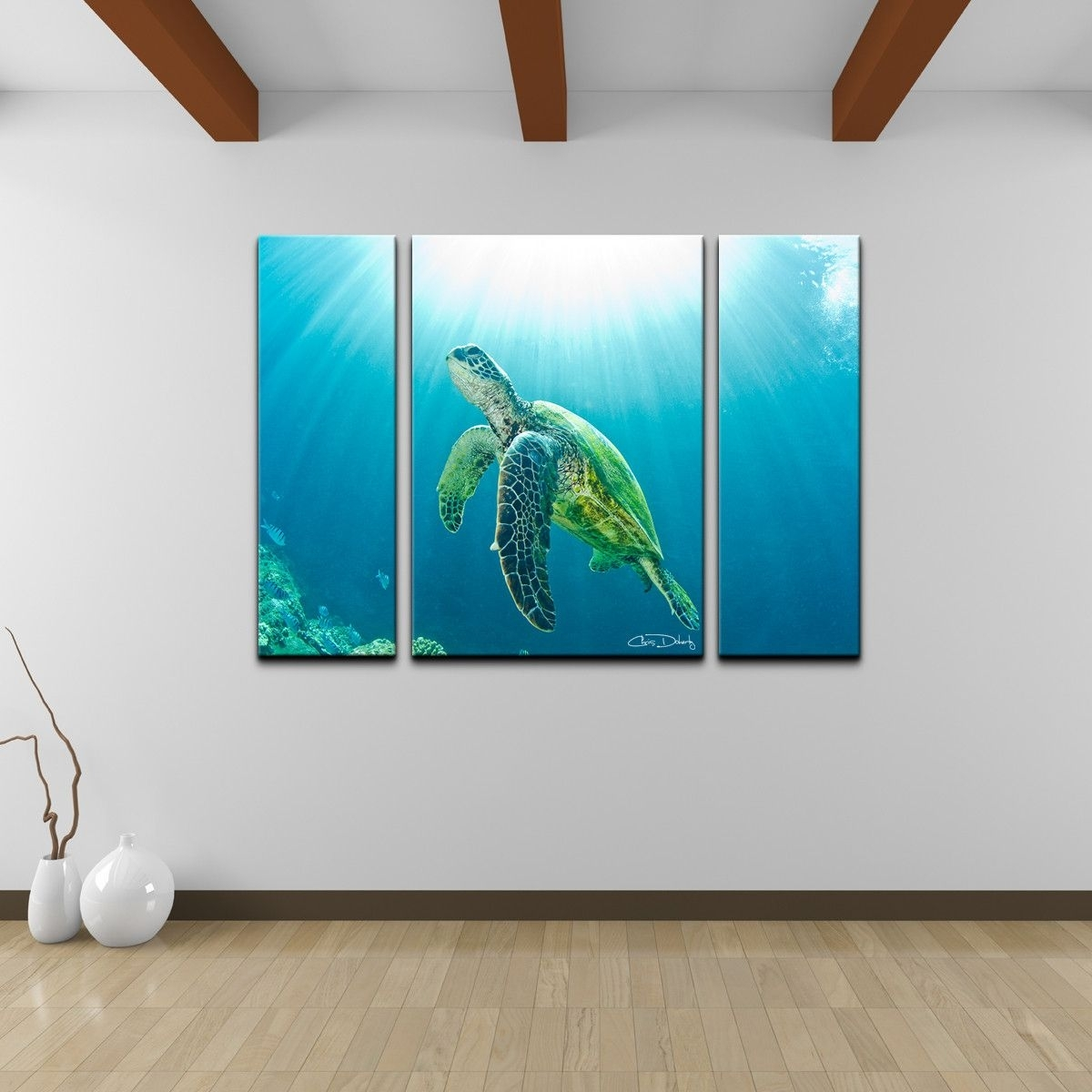 Christopher Doherty 'sea Turtle' Canvas Wall Art (3 Piece) | Turtle Within Sea Turtle Canvas Wall Art (View 8 of 20)
