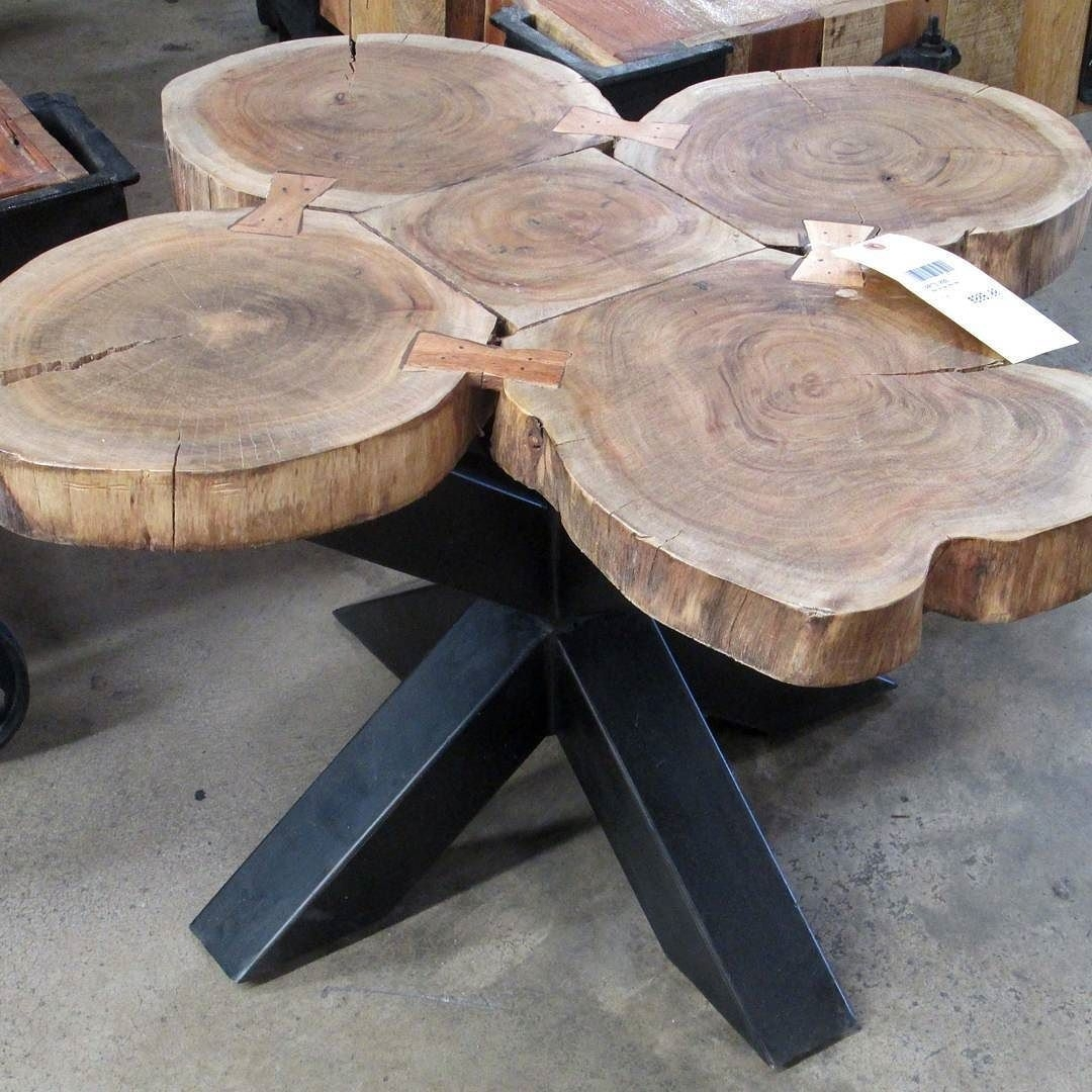 Coffee Table Made With Slices Of A Whole Tree Trunk, Revealing The In Sliced Trunk Coffee Tables (View 5 of 30)