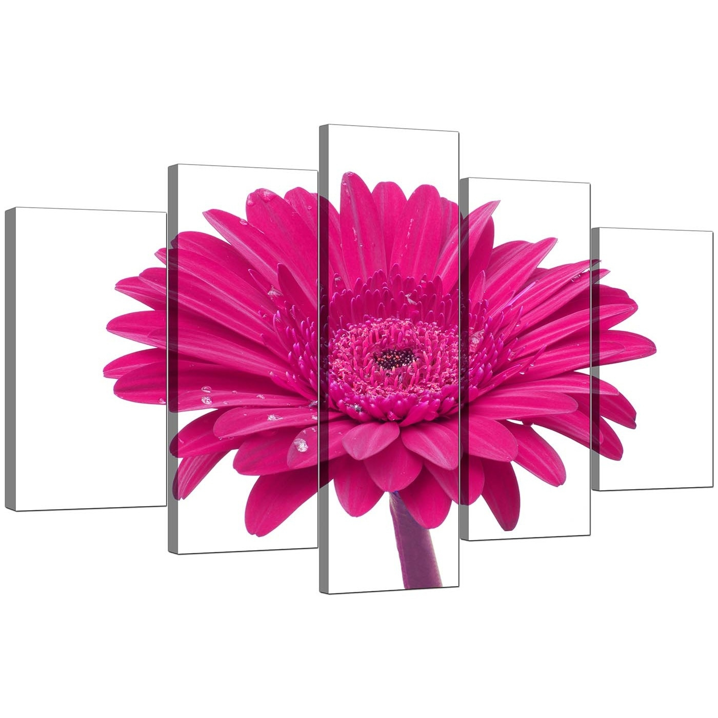 Extra Large Flower Canvas Wall Art 5 Piece In Pink in Pink Wall Art (Image 10 of 20)