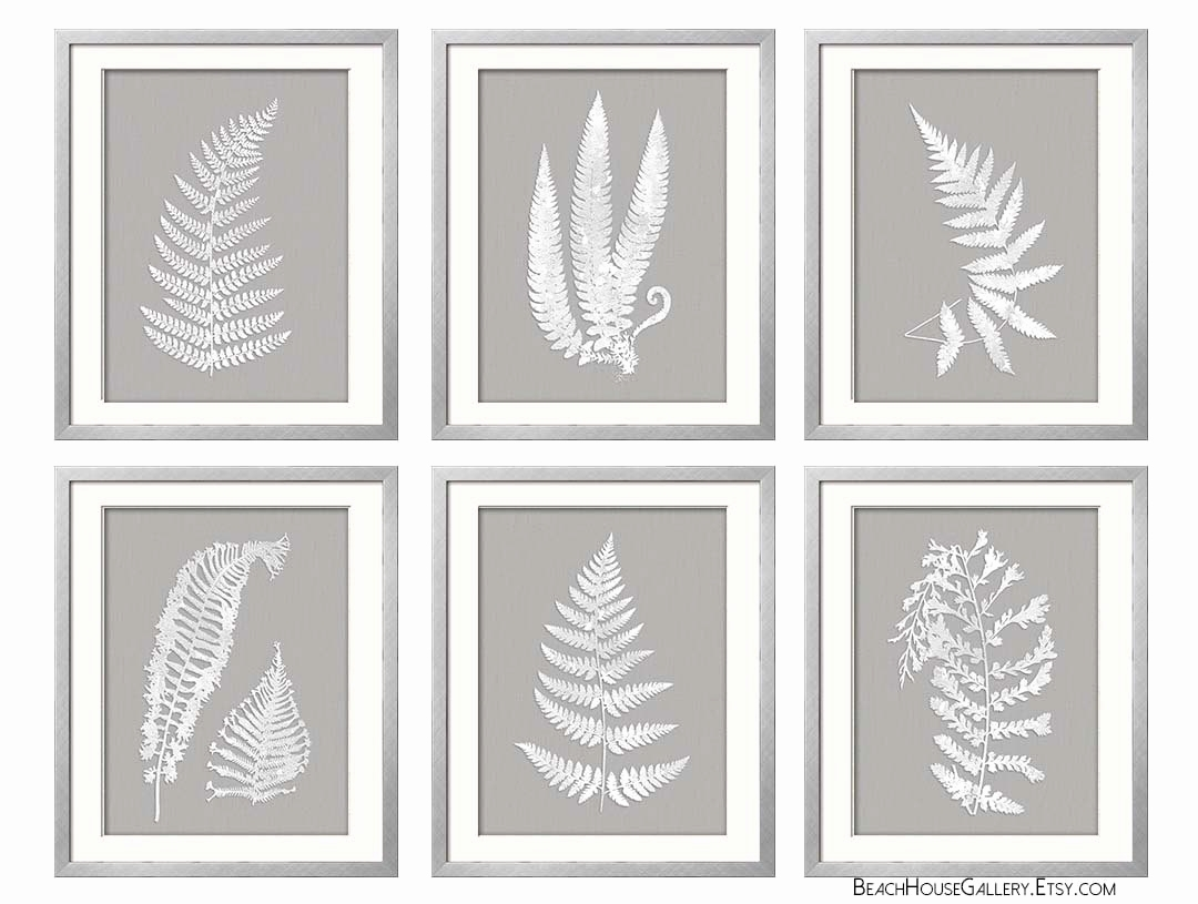Ferns Garden Botanical Prints Best Of Gray White Wall Art Fern intended for Grey And White Wall Art (Image 11 of 20)