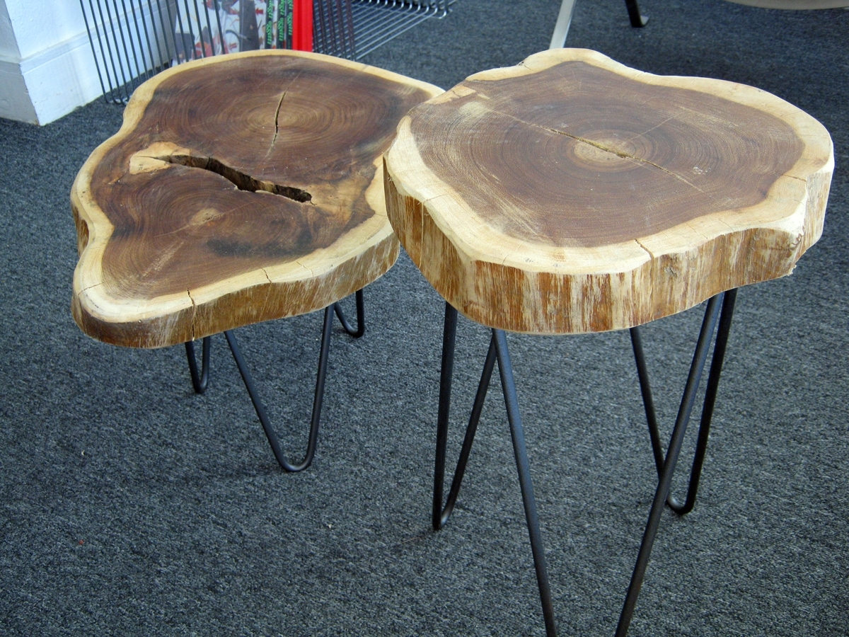 Furniture: Magnificent Trunk End Table With Gorgeous Wood Trends Intended For Sliced Trunk Coffee Tables (View 13 of 30)