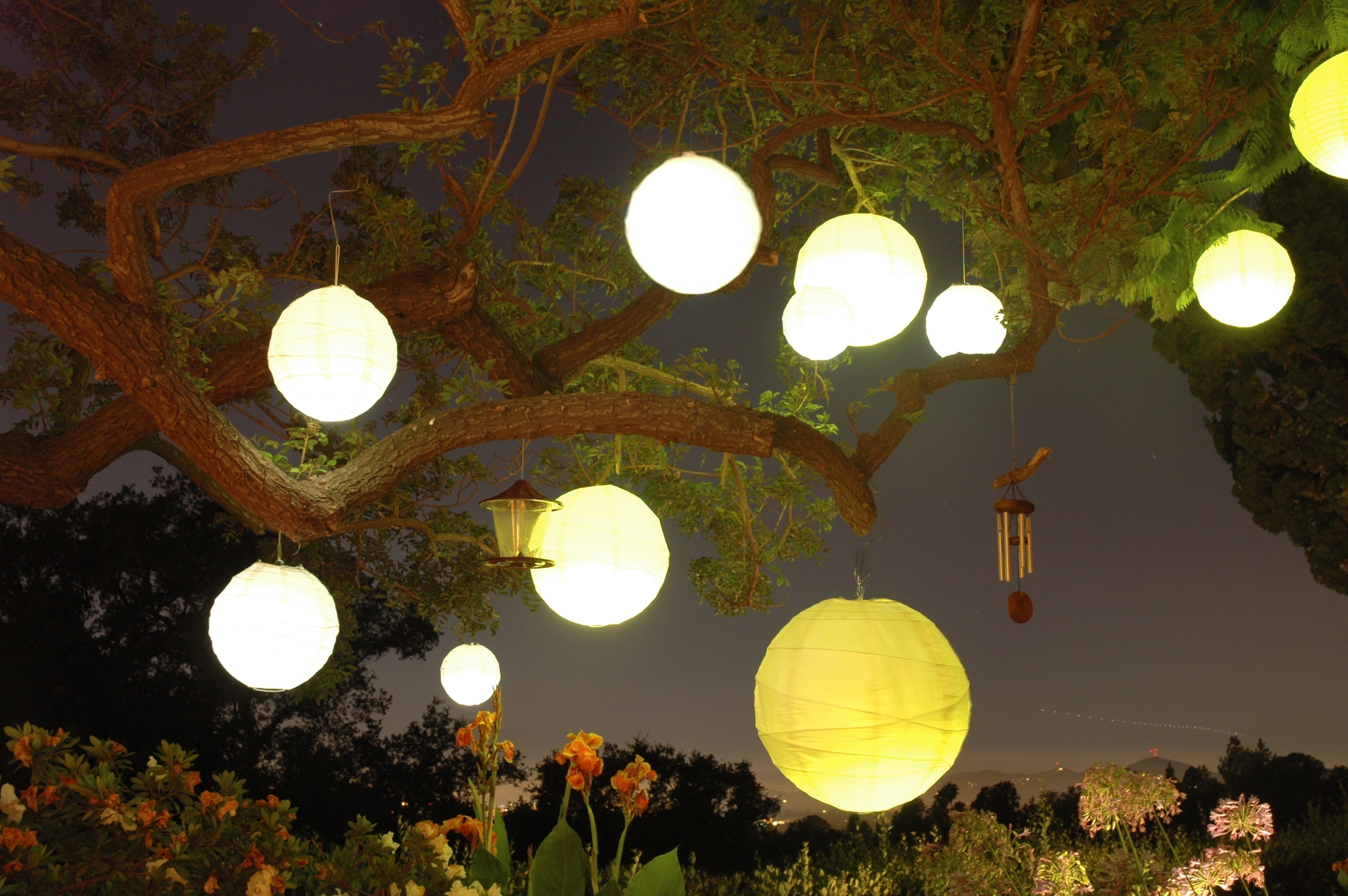 Images Of Paper Lanterns Hanging From Trees - #spacehero regarding Outdoor Hanging Japanese Lanterns (Image 9 of 20)