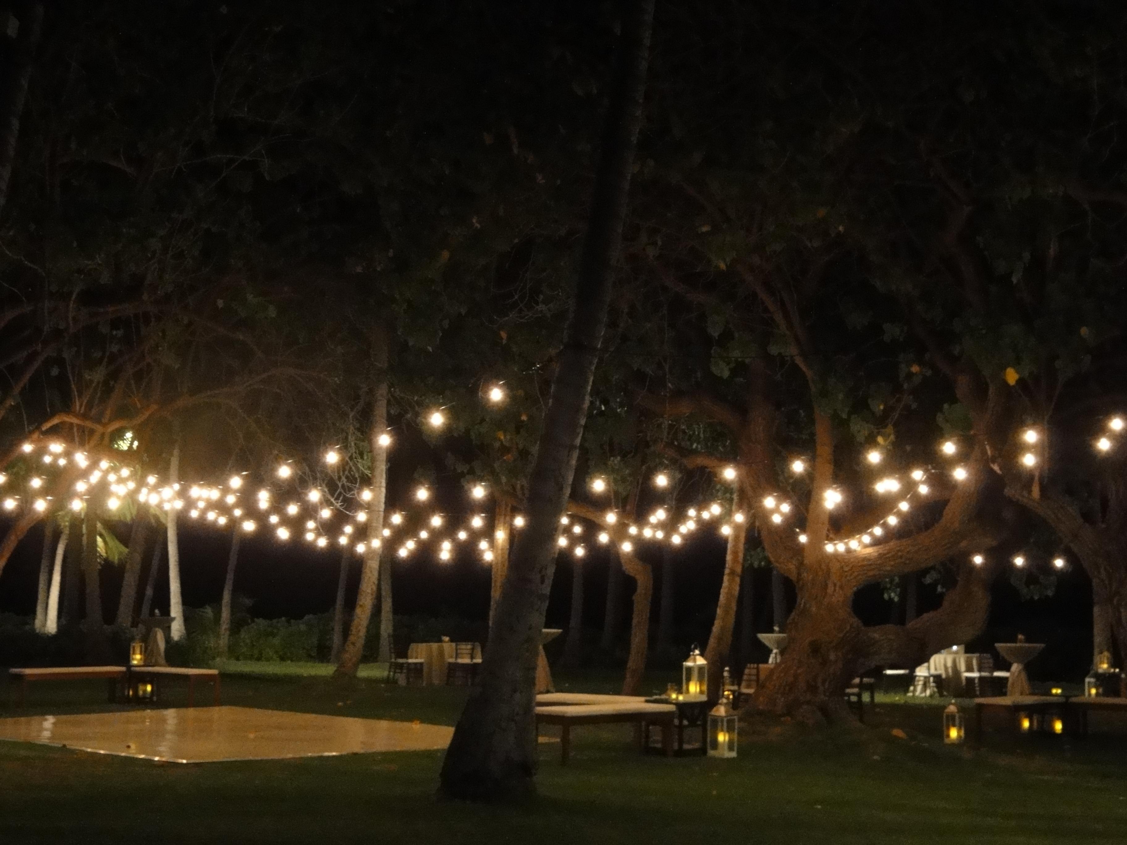 Italian Outdoor Lighting – Outdoor Lighting Ideas Pertaining To Italian Outdoor Lanterns (View 7 of 20)