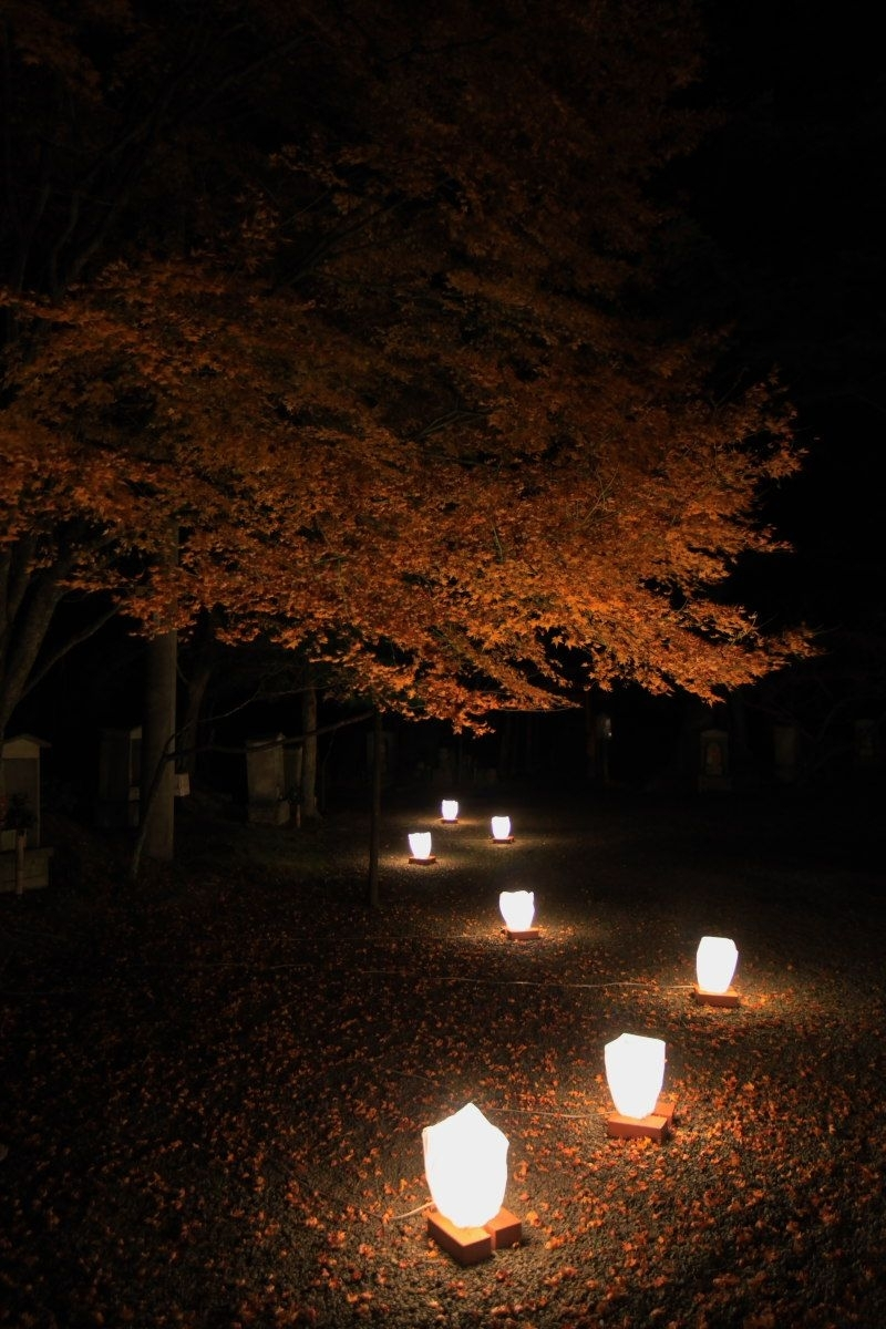 Japanese Garden Lights Mptfk.exblog.jp | Japanese Garden | Pinterest regarding Outdoor Lighting Japanese Lanterns (Image 12 of 20)