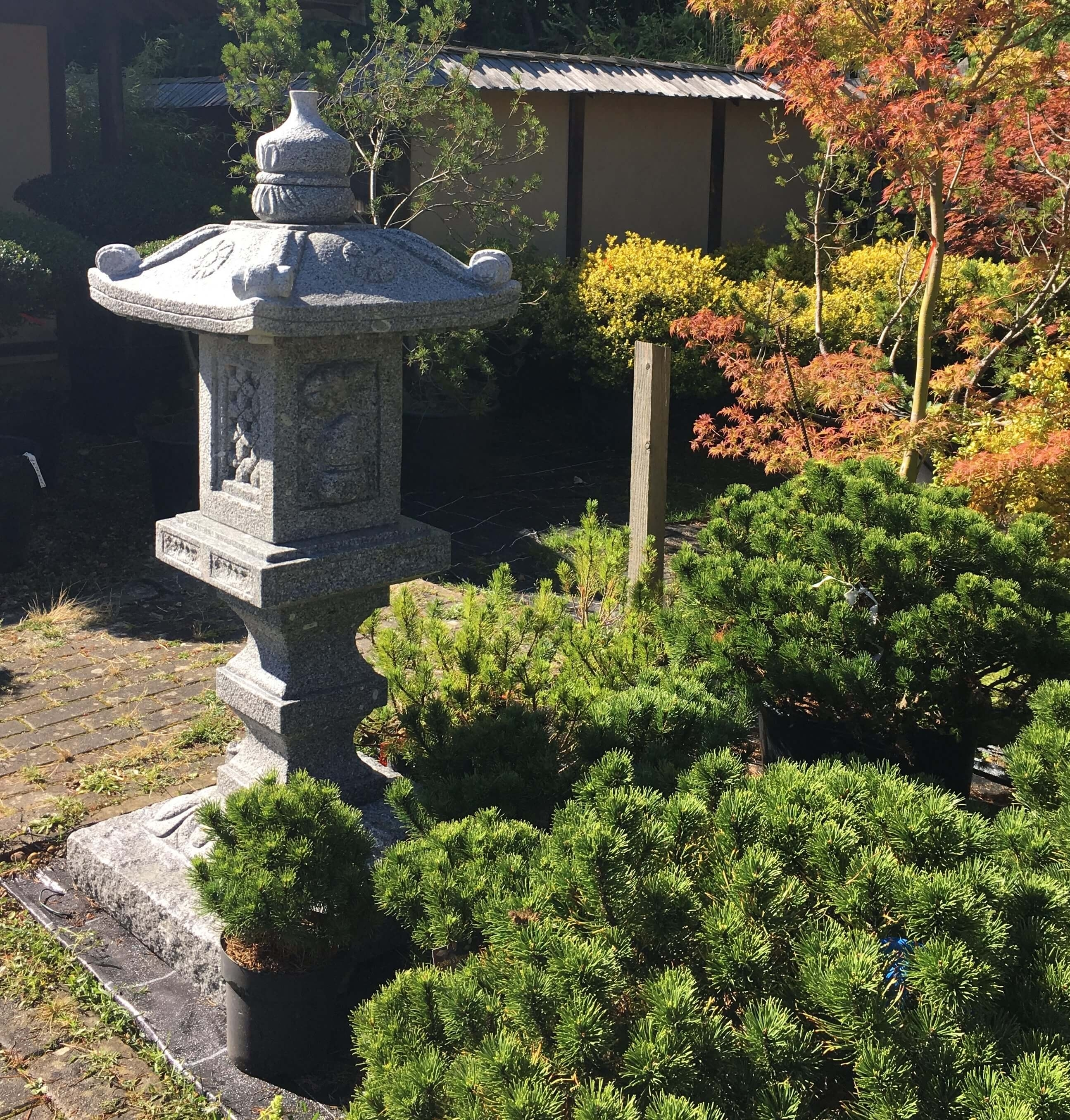 Japanese Stone Garden Lanterns For Sale Uk Statues Statue Lantern In Outdoor Japanese Lanterns For Sale (View 11 of 20)