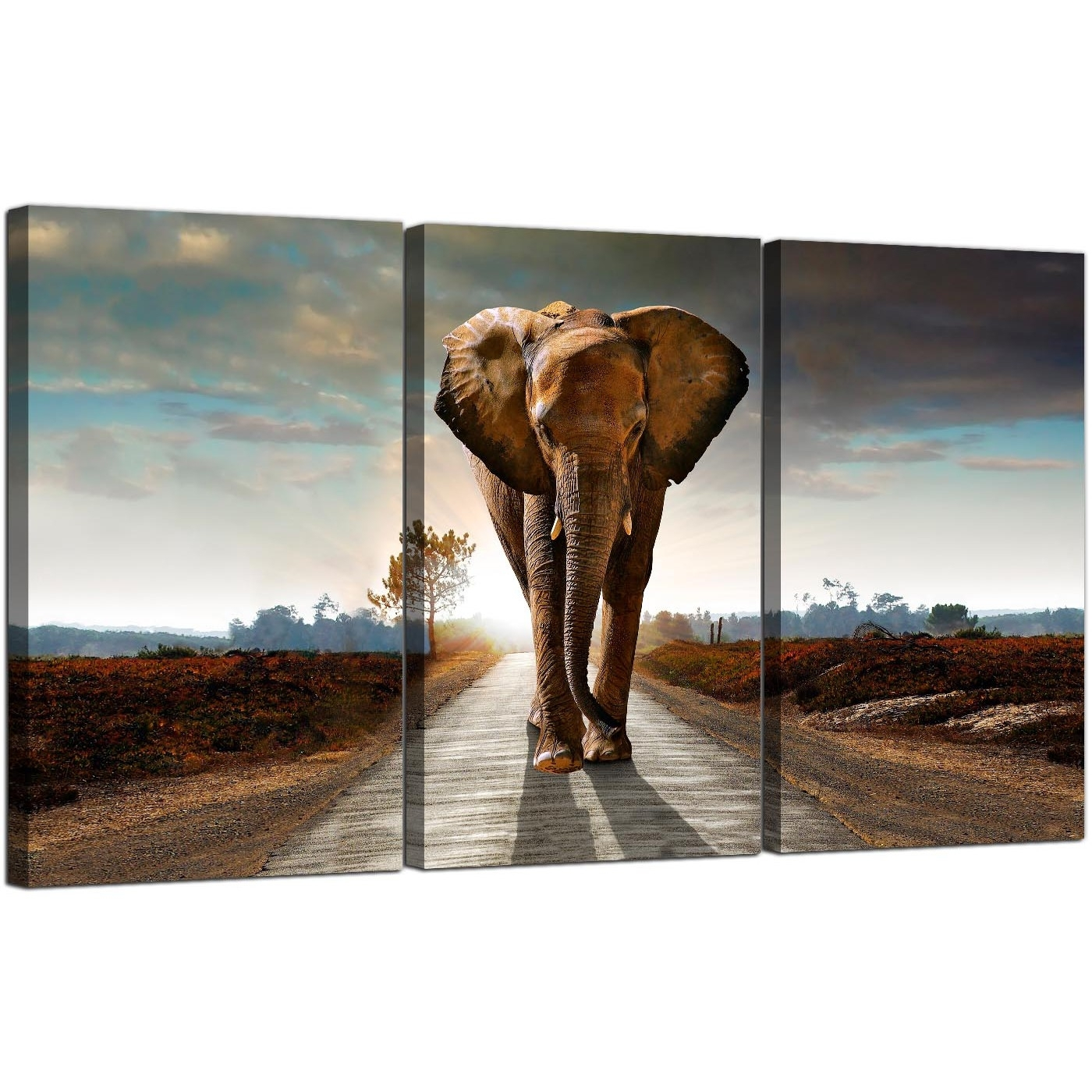Large African Elephant Canvas Prints 3 Part For Your Hallway in 3 Piece Canvas Wall Art (Image 14 of 20)