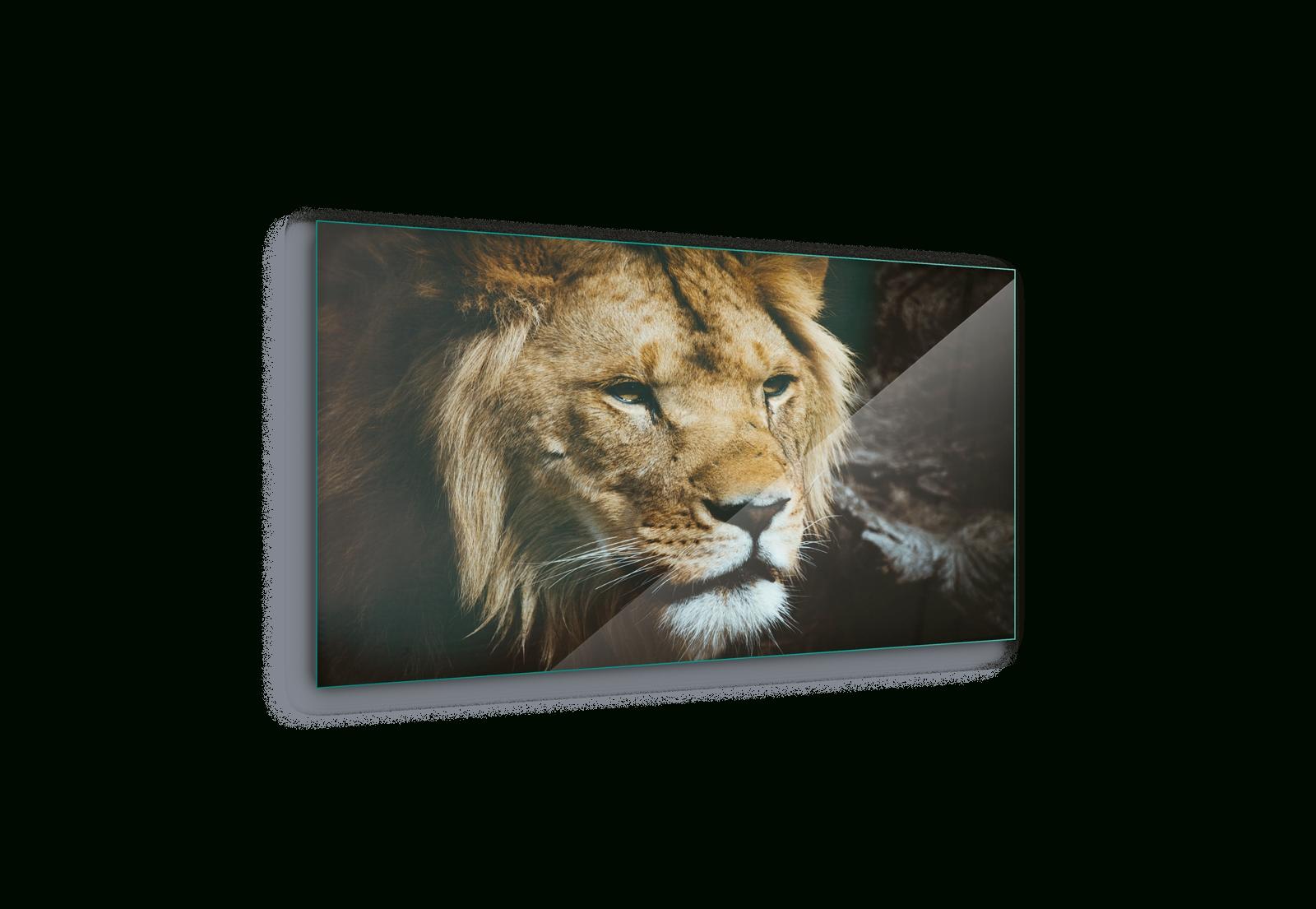 Lion Portrait Wild Animal Canvas & Glass Wall Art Pictures (Fw-1178 regarding Animal Canvas Wall Art (Image 18 of 20)