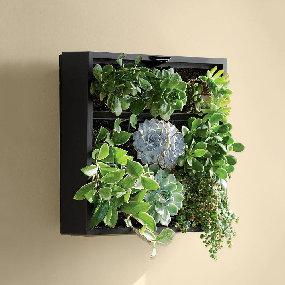 Living Art Green Wall / Tabletop Planter The Green Head, Green Wall inside Green Wall Art (Image 16 of 20)