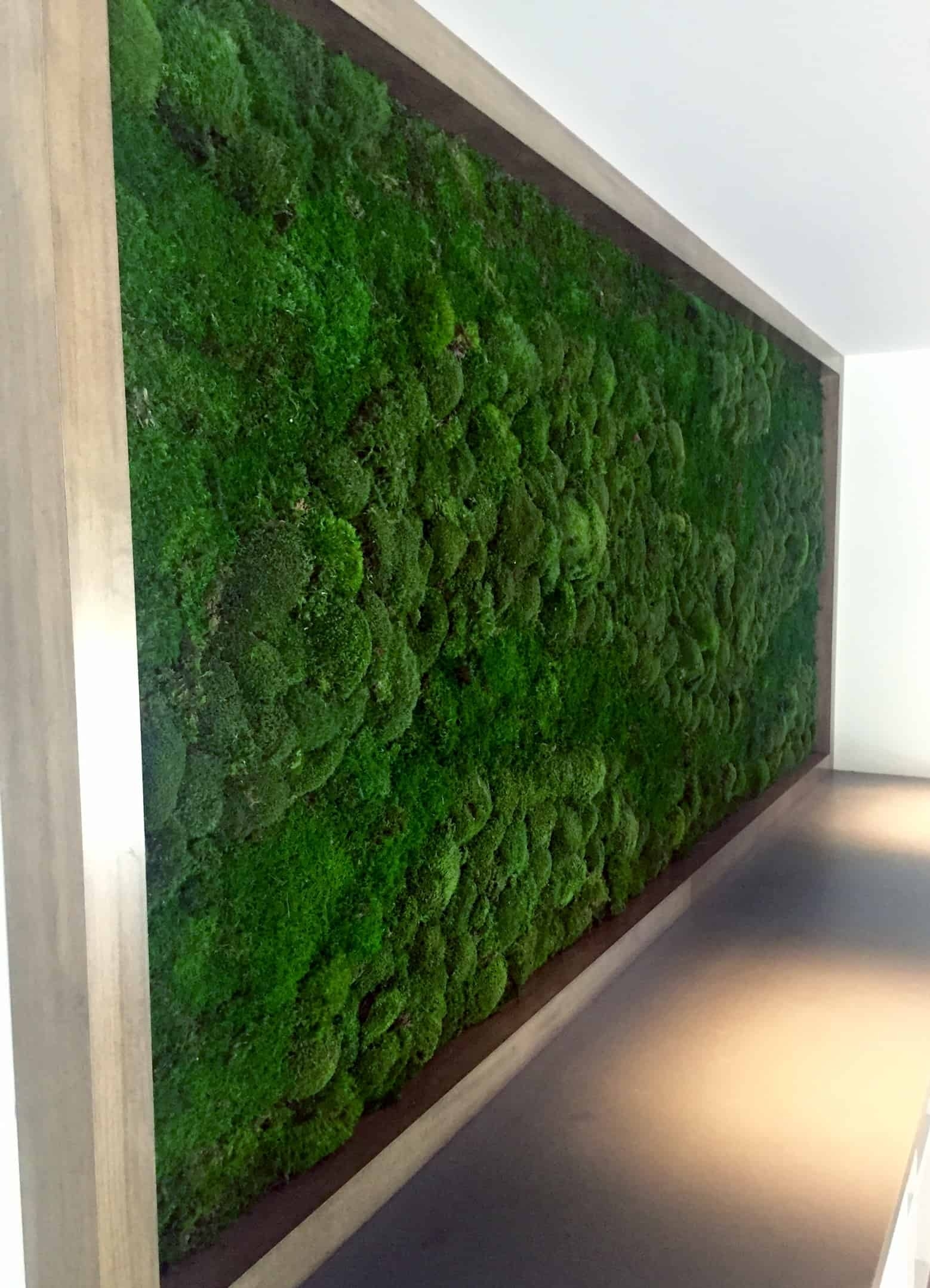 Make Moss Walls - Plantscapers with Moss Wall Art (Image 6 of 20)