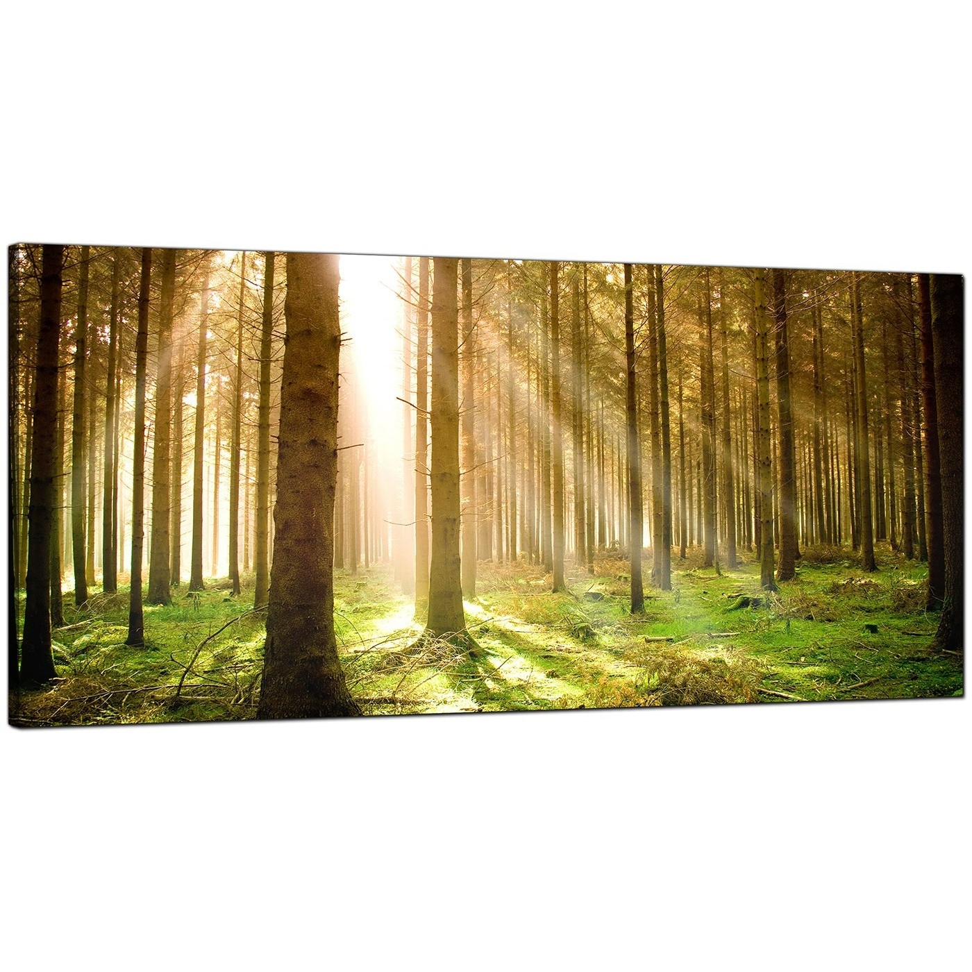 Modern Canvas Prints Of Forest Trees For Your Dining Room intended for Modern Canvas Wall Art (Image 16 of 20)
