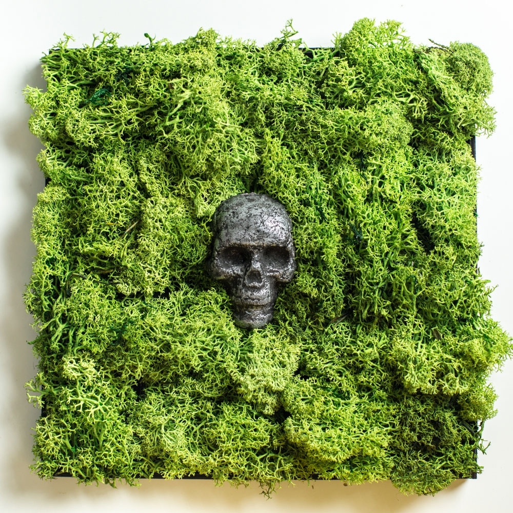 Moss Wall Art With Aged Skull Sculpture - Krasen Dom in Moss Wall Art (Image 10 of 20)