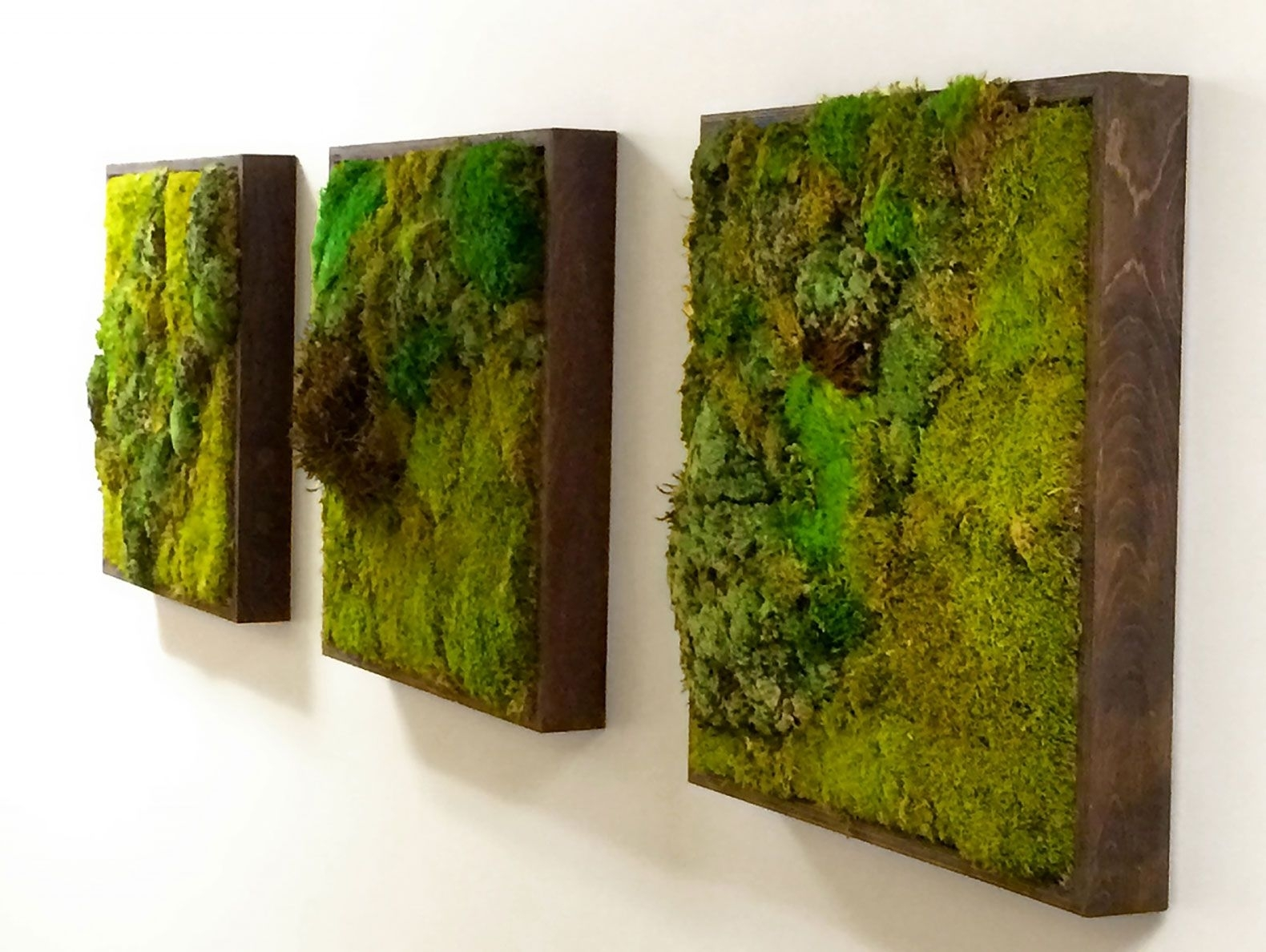 Moss Walls: The Newest Trend In Biophilic Interiors | Art 3 X within Moss Wall Art (Image 14 of 20)