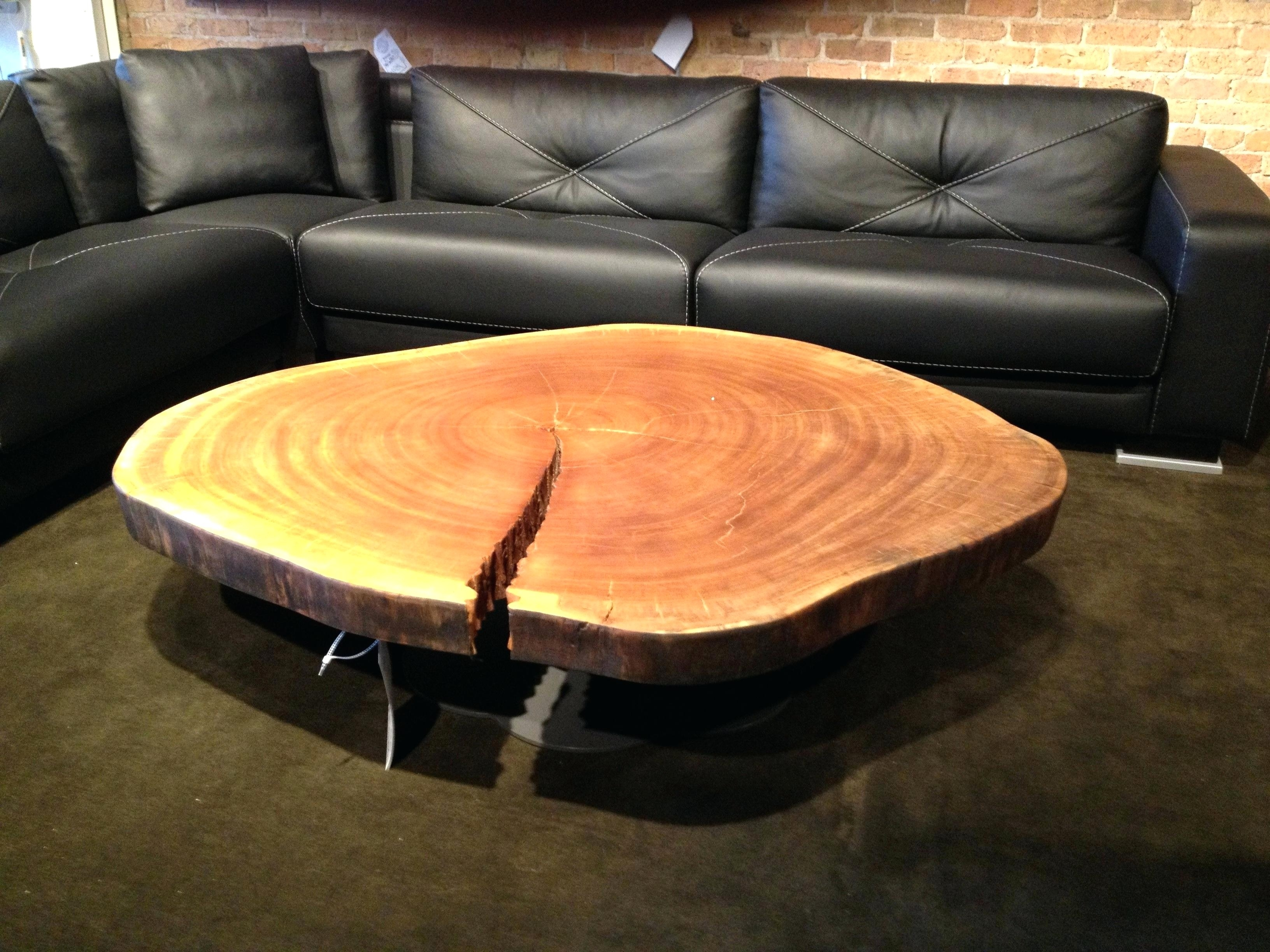 Most Current Tree Trunk Coffee Table With Tables Wood Slice Awesome In Sliced Trunk Coffee Tables (View 15 of 30)