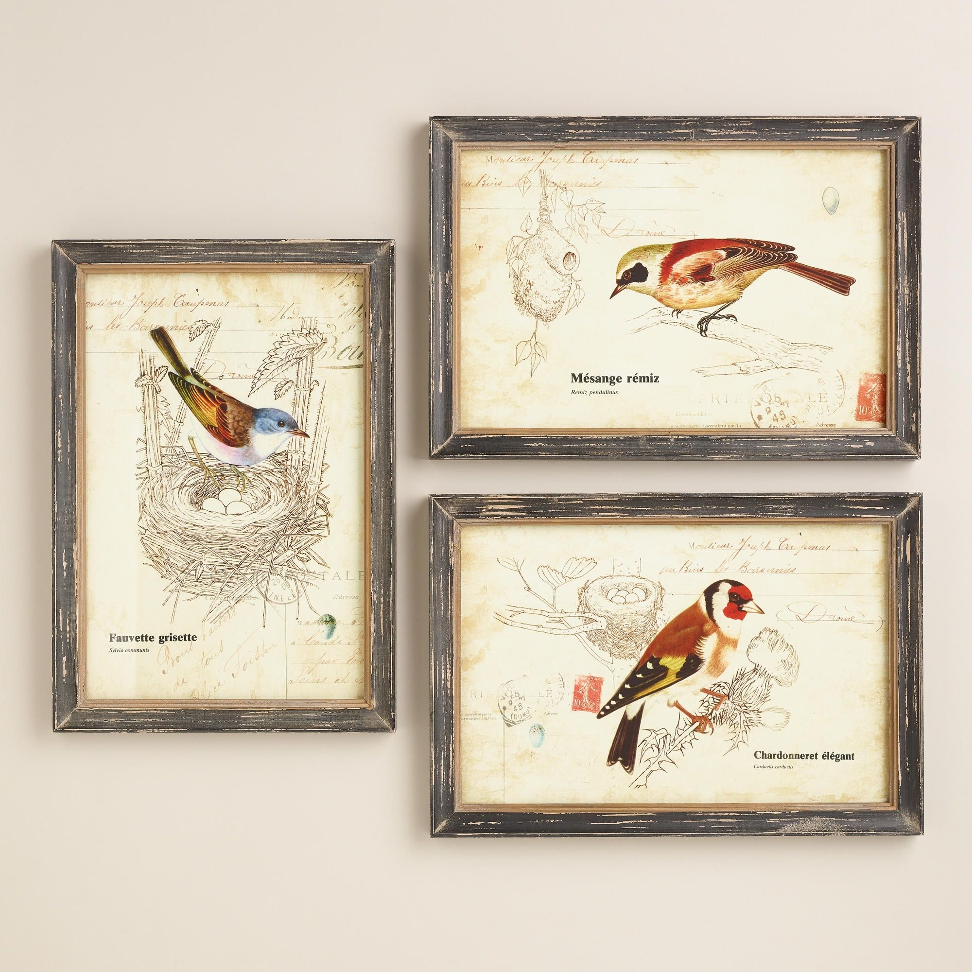 Nature Birds Wall Art, Set Of 3 | World Market | For The Home With Regard To World Market Wall Art (View 5 of 20)