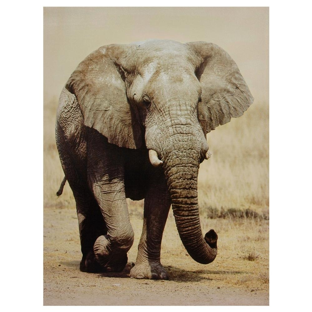 """Oriental Furniture 32 In. X 24 In. """"walking Elephant"""" Canvas Wall with Elephant Canvas Wall Art (Image 18 of 20)"""