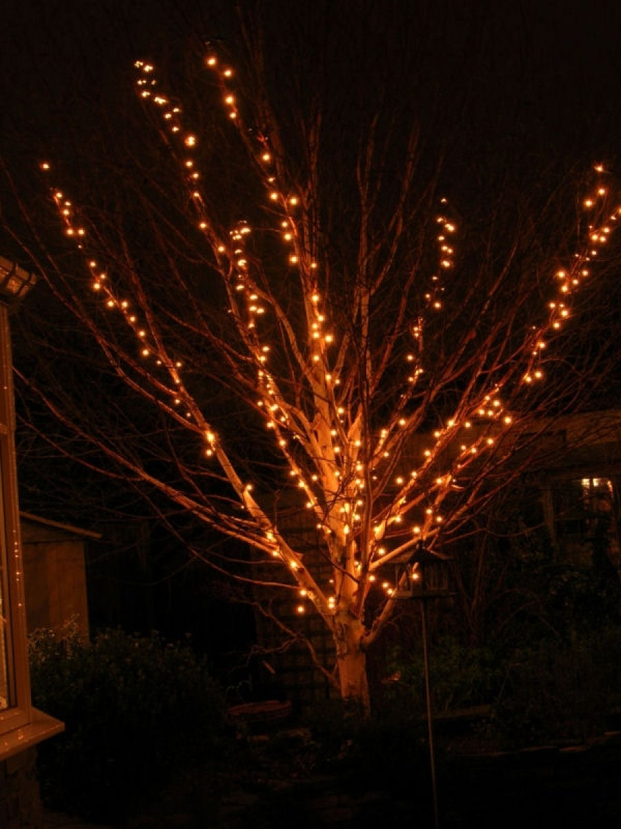 Outdoor Christmas Lights Ideas Led Tree Year Round Decorative String for Outdoor Lanterns for Trees (Image 13 of 20)