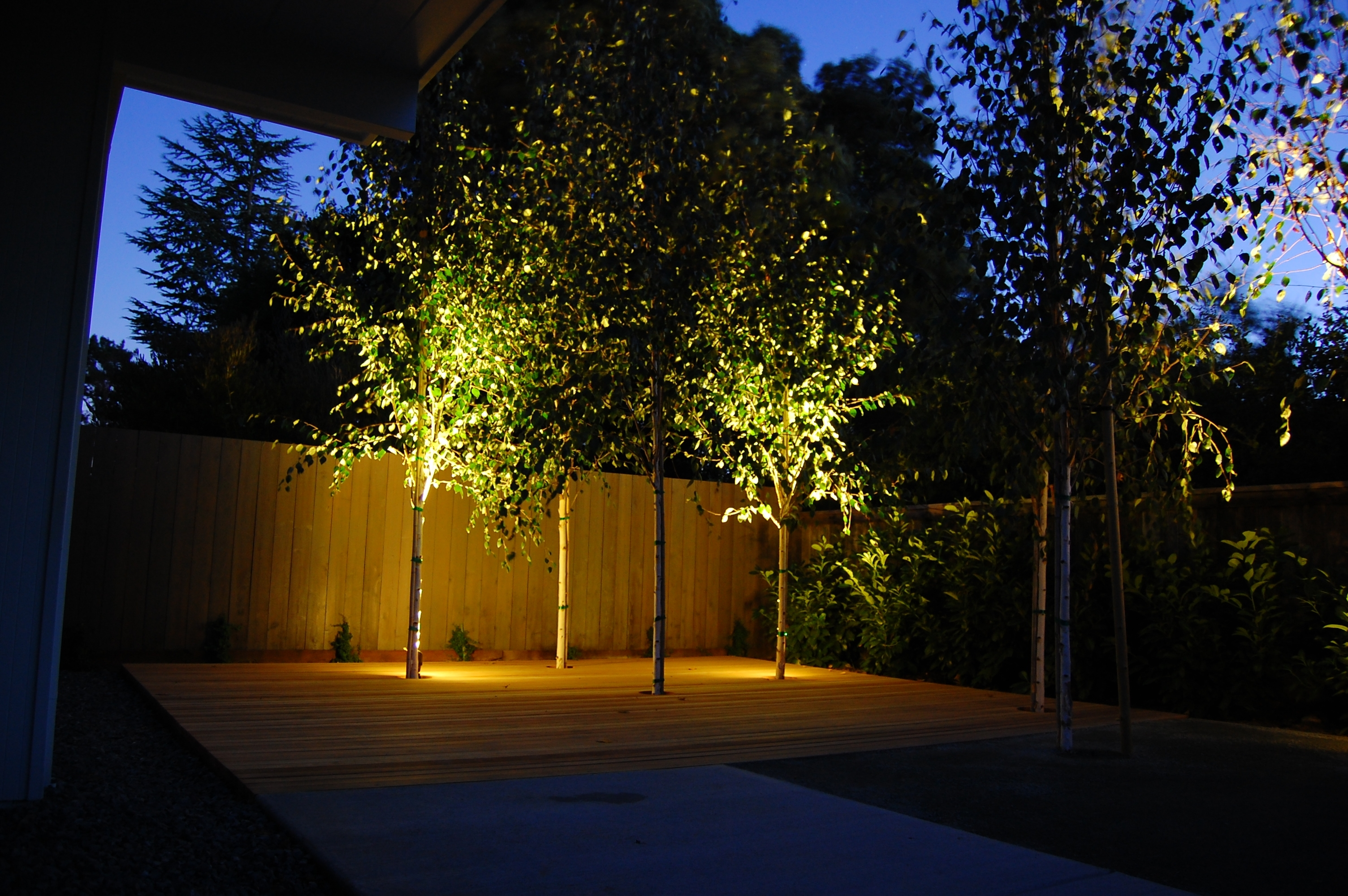 Outdoor Lights For Trees - Outdoor Lighting Ideas inside Outdoor Lanterns for Trees (Image 18 of 20)