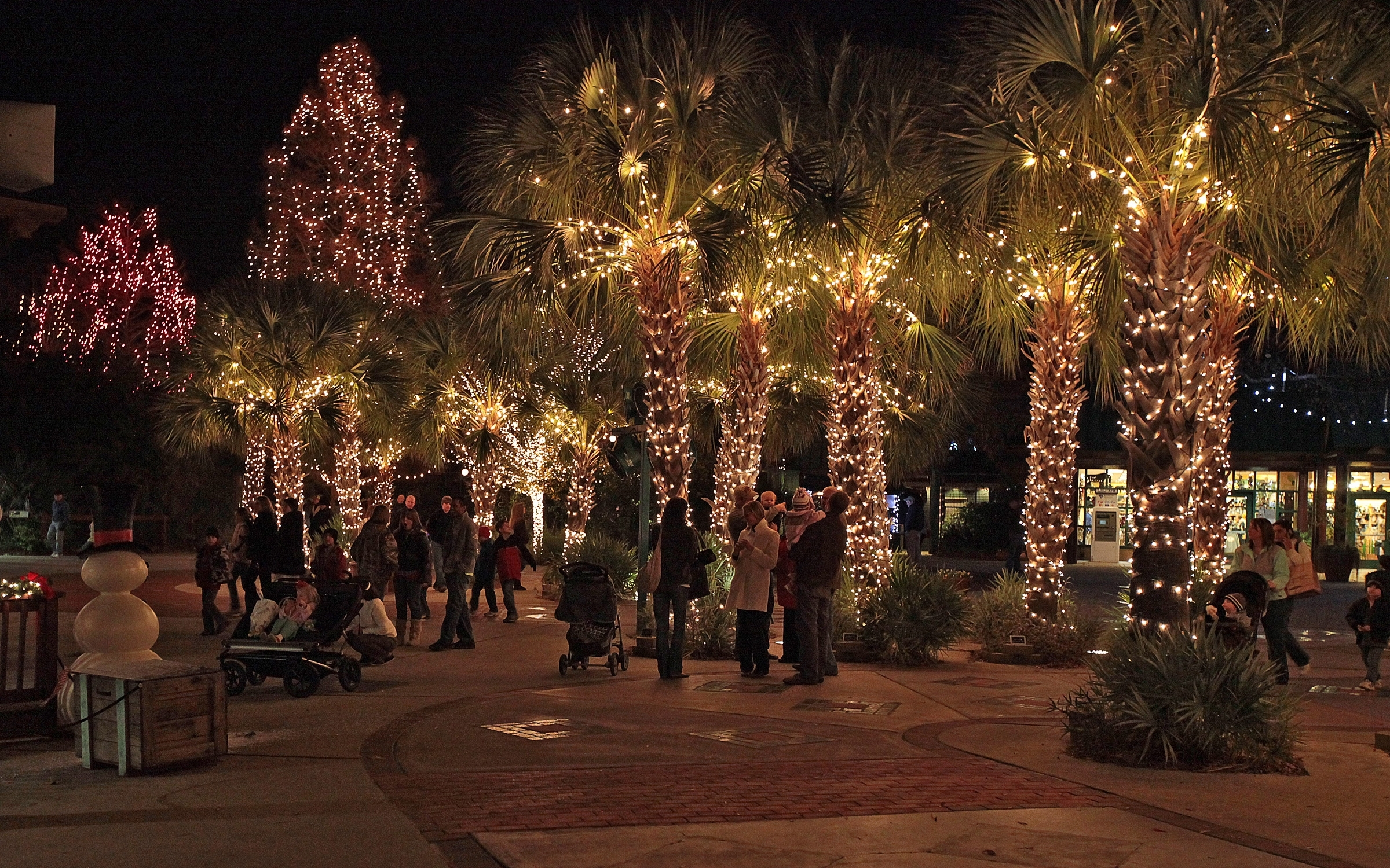 Outdoor Solar Decorations String Lighting On Palm Trees In within Outdoor Lanterns for Christmas (Image 16 of 20)