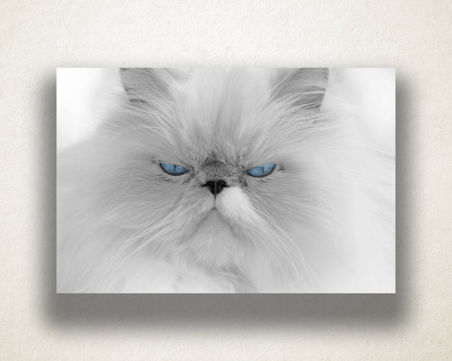 Persian Cat Canvas Art, White Fluffy Cat Wall Art, Cat Canvas Print in Cat Canvas Wall Art (Image 17 of 20)
