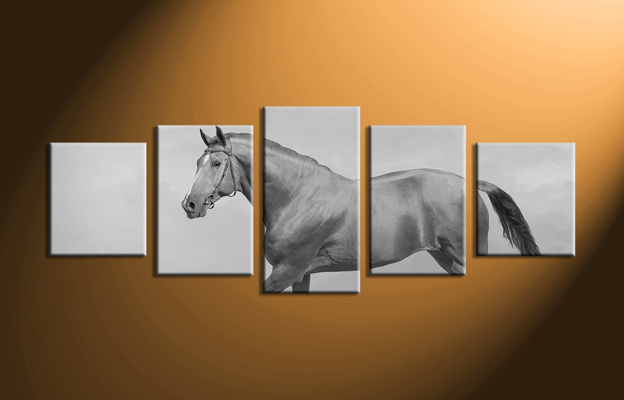 Piece Canvas Horse Black And White Wildlife Wall Art Home Decor within 5 Piece Canvas Wall Art (Image 14 of 20)