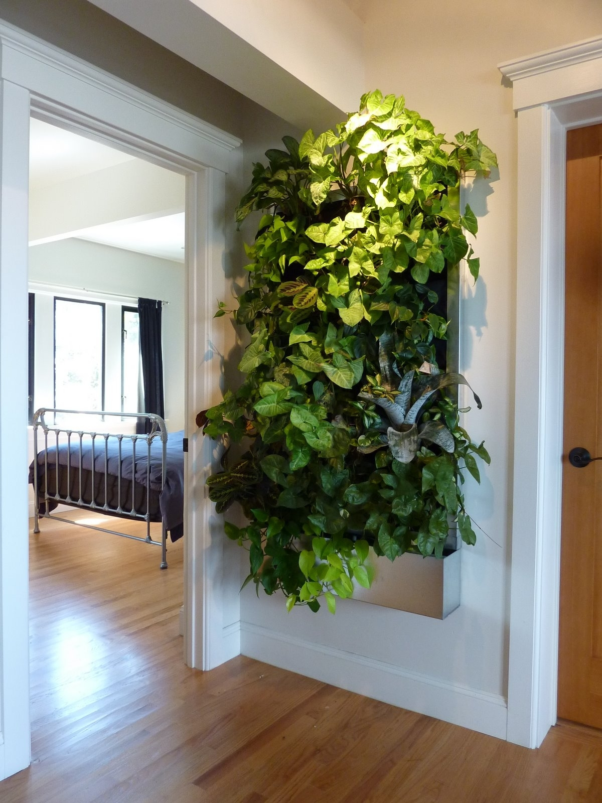 Plants On Walls Vertical Garden Systems: Low Light Tropical Living Art Throughout Living Wall Art (Photo 17 of 20)
