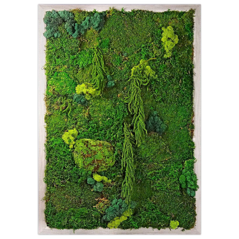Preserved Moss Wall Garden   Luludi Living Art   Ahalife Throughout Living Wall Art (Photo 16 of 20)