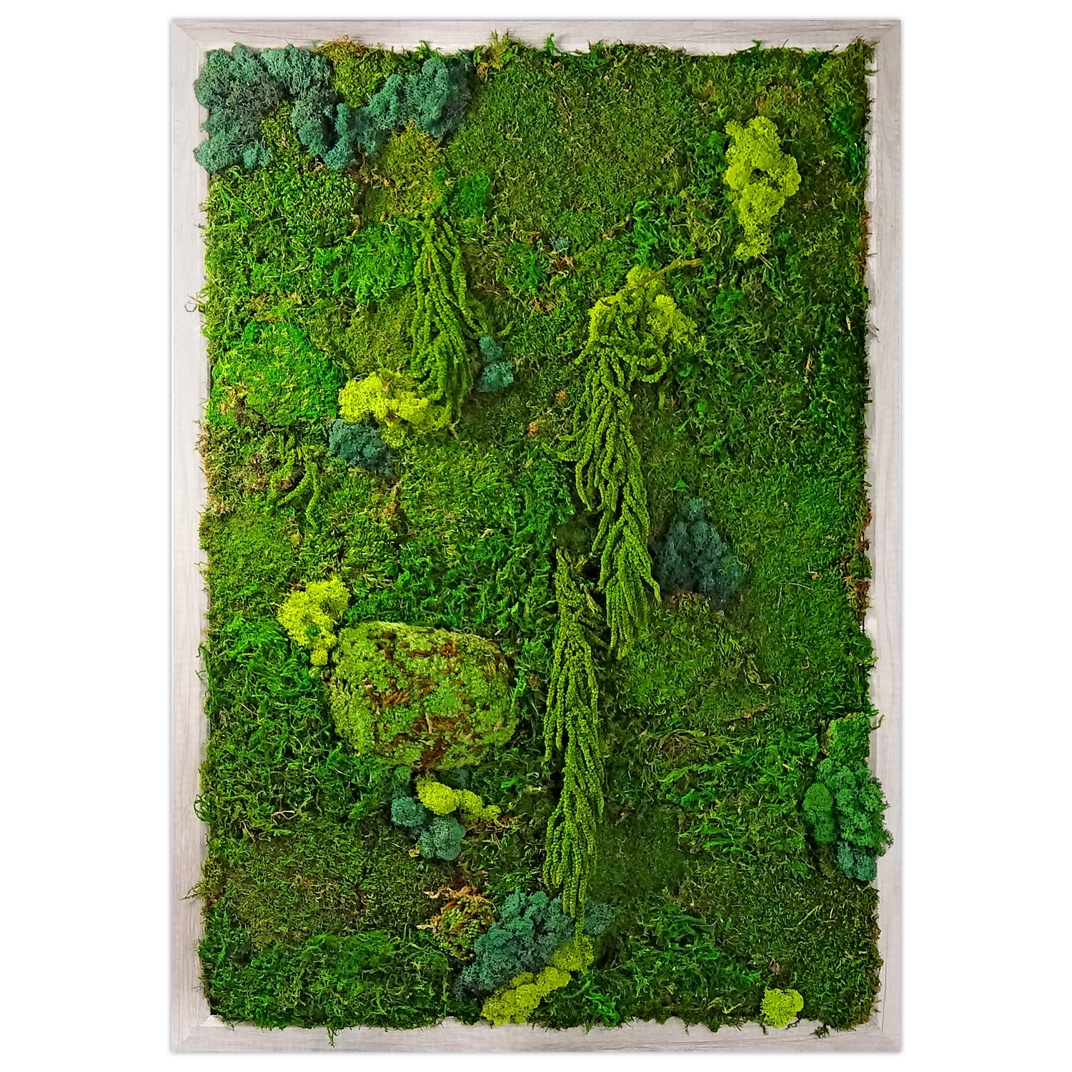 Preserved Moss Wall Garden | Luludi Living Art | Ahalife with Moss Wall Art (Image 16 of 20)