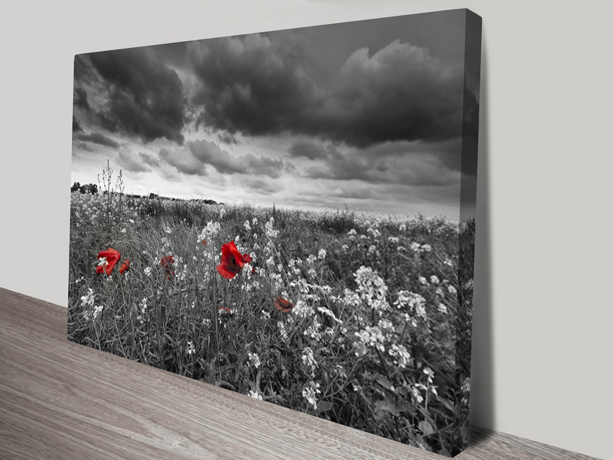 Red Poppy Field Black And White Canvas Art within Black And White Canvas Wall Art (Image 18 of 20)