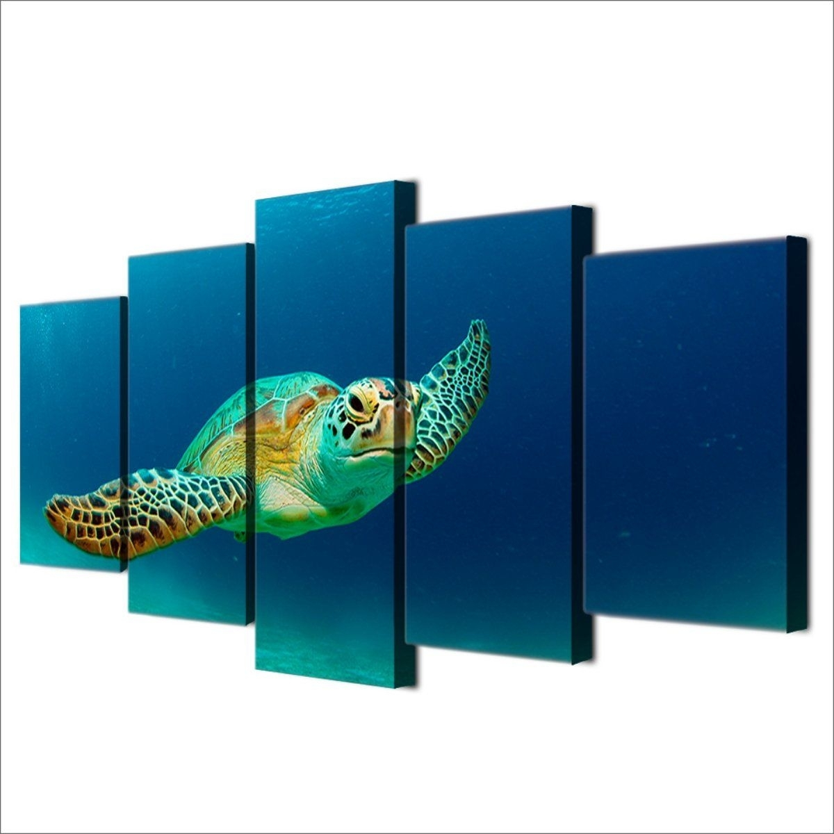 Sea Turtle | Turtle And Products With Regard To Sea Turtle Canvas Wall Art (View 16 of 20)