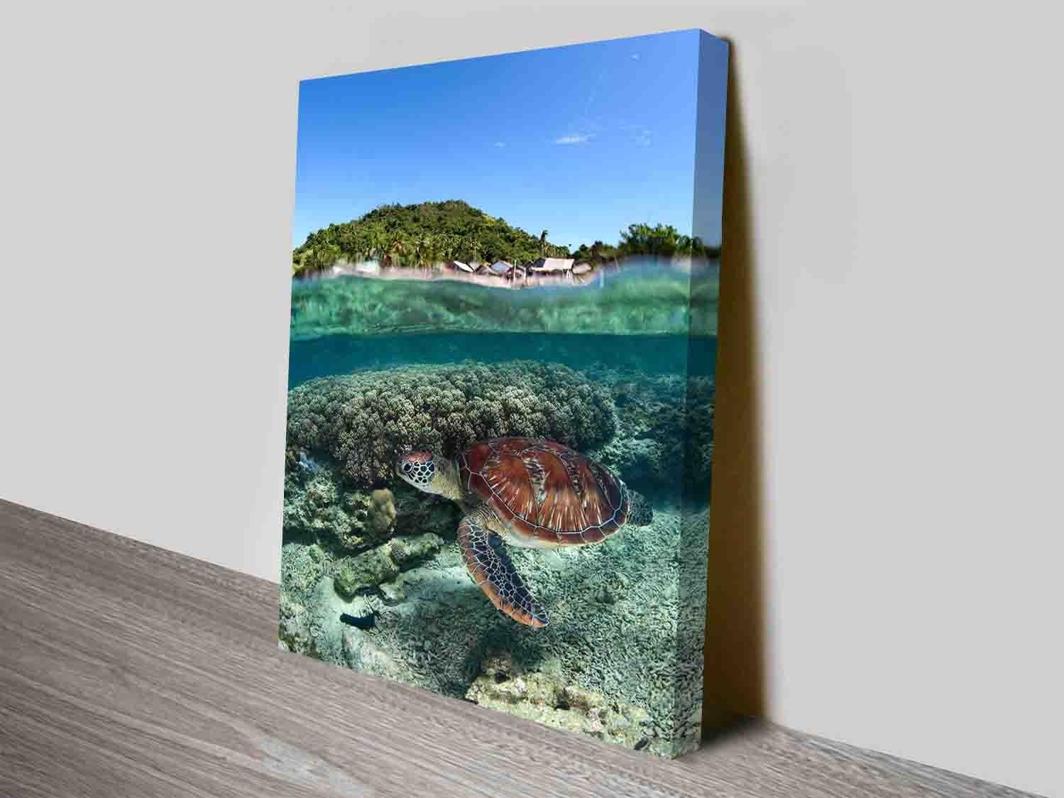 Serene Sea Turtle Discount Photo Art Into Canvas Prints in Sea Turtle Canvas Wall Art (Image 17 of 20)