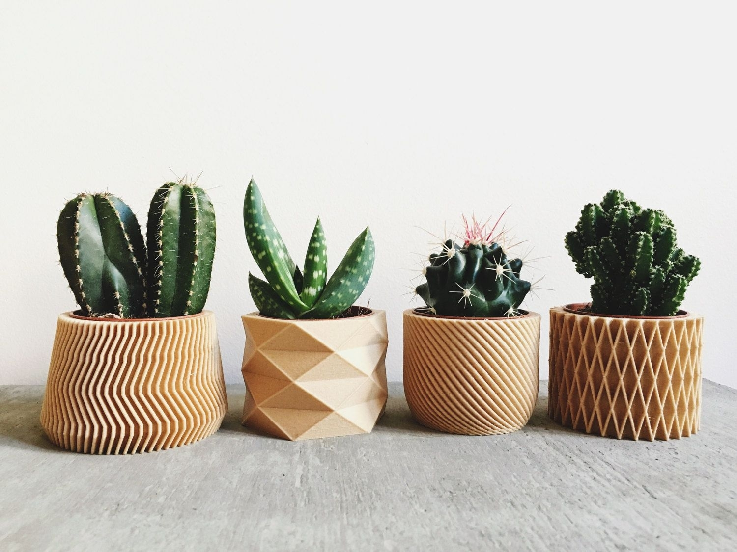 Set Of 4 Mini Wood Planters / Design Hygge Geometric Minimalist throughout Cacti Brass Coffee Tables (Image 24 of 30)