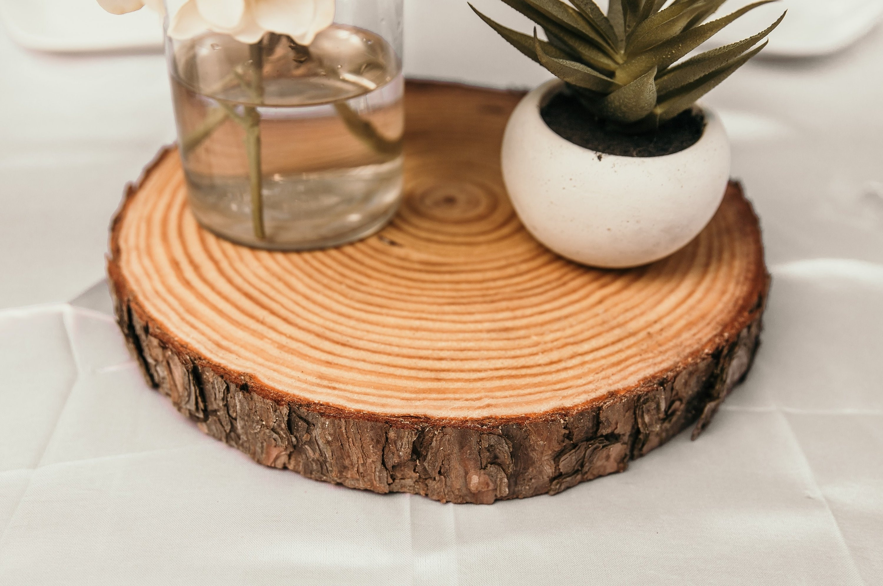 Tree Trunk Coffee Table New 1 5 Thick Wood Slices Wood Slices For For Sliced Trunk Coffee Tables (View 23 of 30)