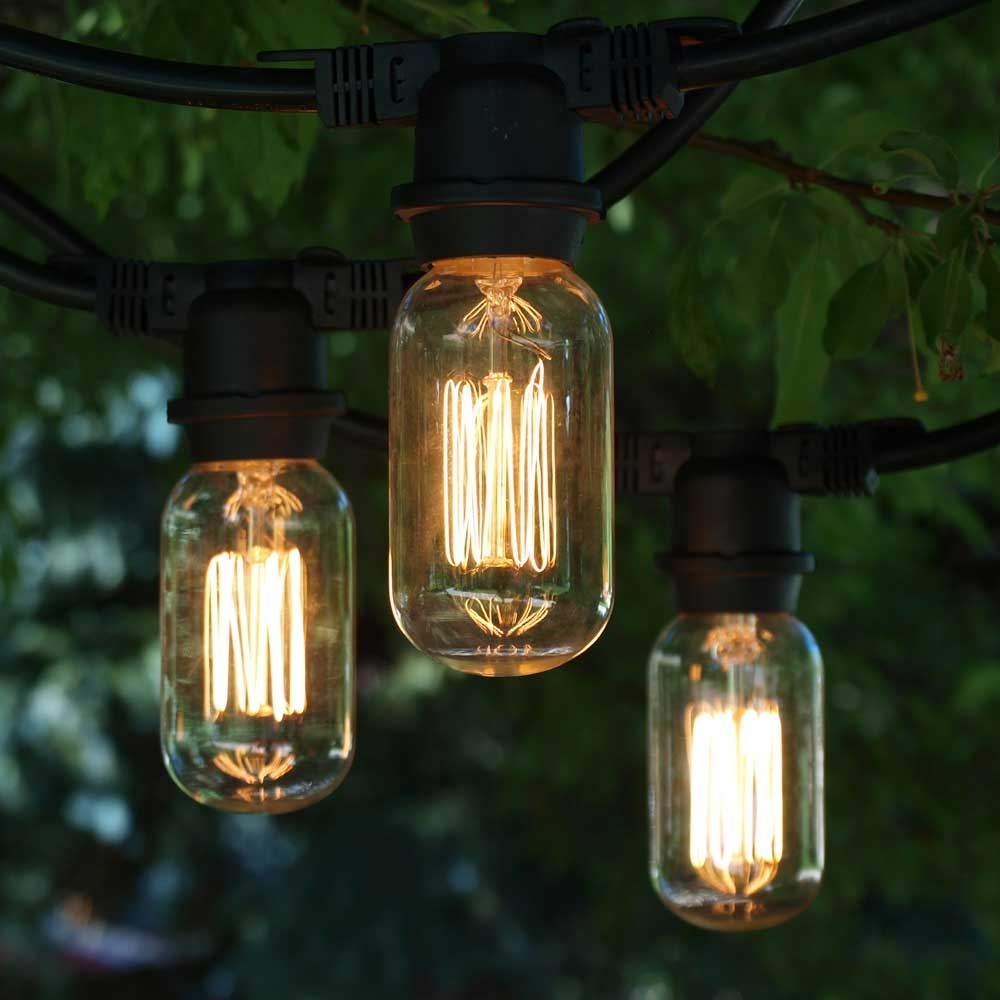Vintage Outdoor String Lights, 48' Black, T14 Edison Cage Bulb with regard to Outdoor Rope Lanterns (Image 20 of 20)