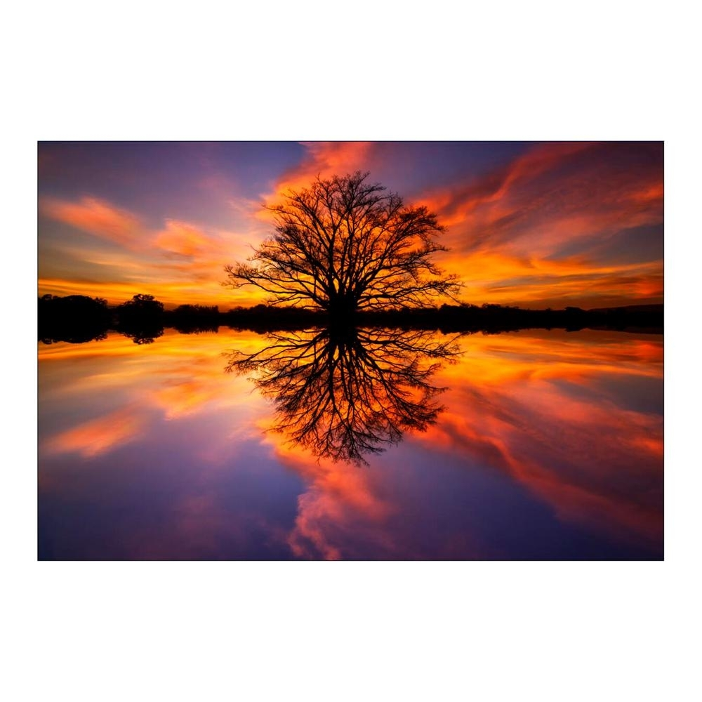 "Yosemite Home Decor 47 In. X 32 In. ""balance"" Tempered Glass Wall Throughout Glass Wall Art (Photo 14 of 20)"