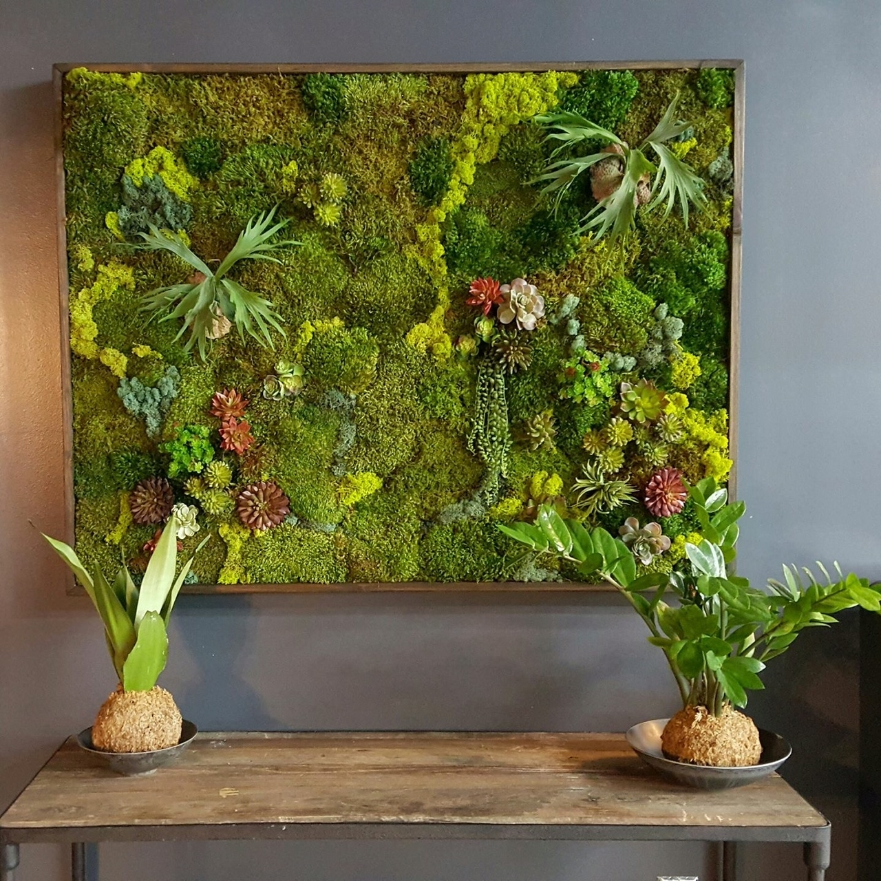 Your Questions About Moss Walls Answered for Moss Wall Art (Image 20 of 20)