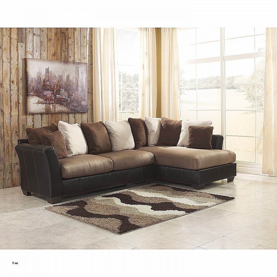 Sectional Sofas: Unique 2 Pc Sectional Sofa Chaise Pc 2 Kurzweil With Regard To Aquarius Light Grey 2 Piece Sectionals With Laf Chaise (View 8 of 30)