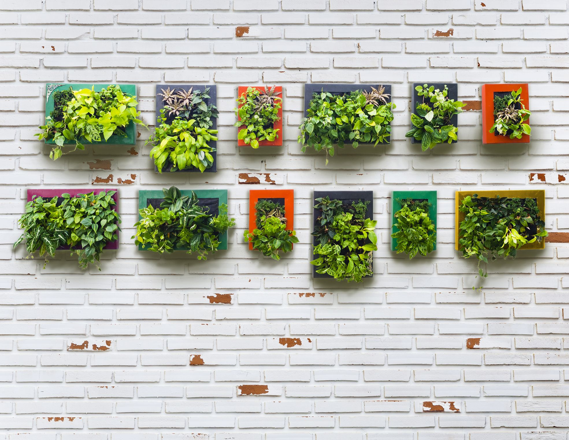 30+ Creative Ways To Plant A Vertical Garden – How To Make A Inside Farm Metal Wall Rack And 3 Tin Pot With Hanger Wall Decor (View 21 of 30)