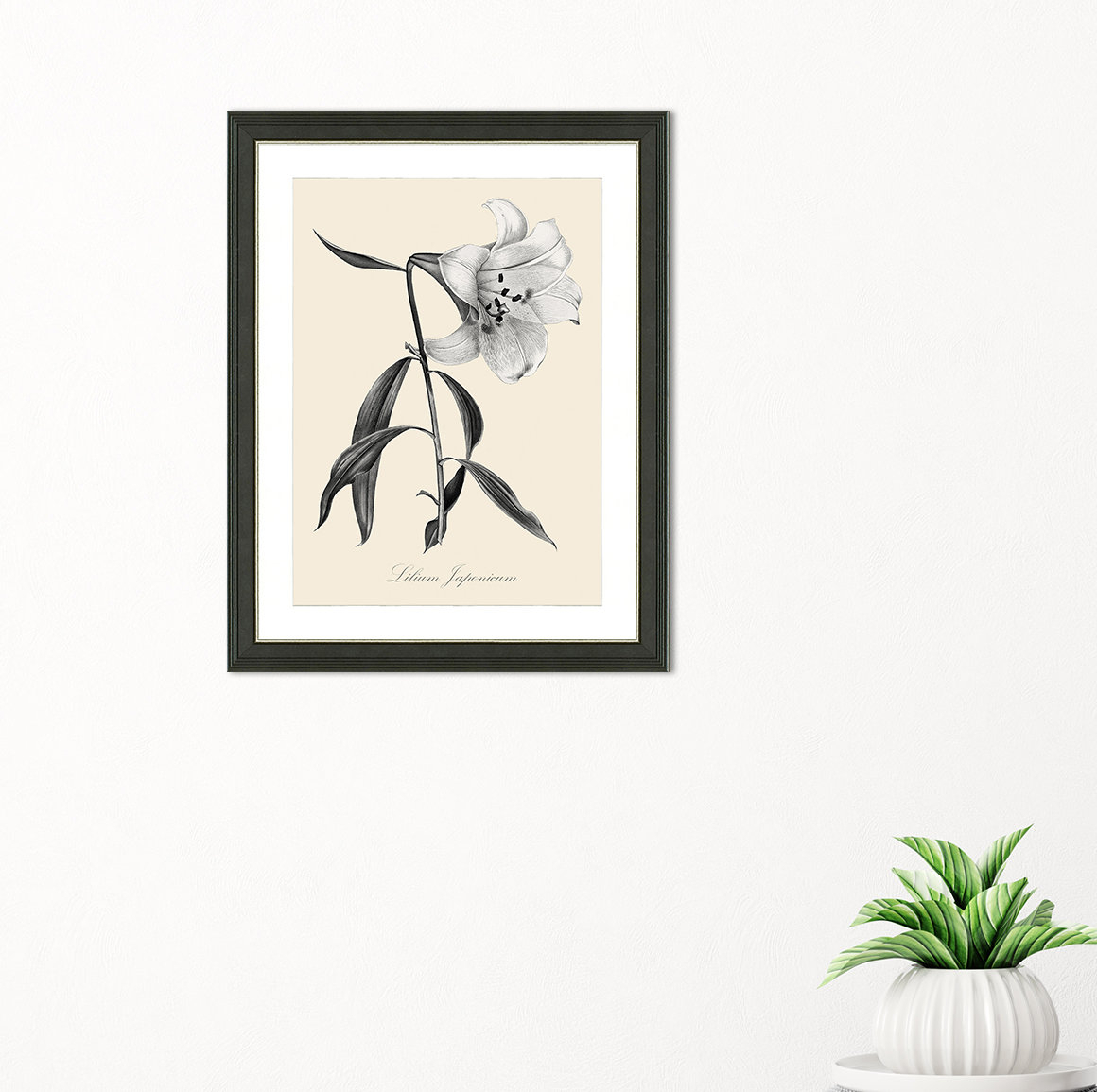 'botanical Iv' Framed Graphic Art Print Inside Rioux Birds On A Wire Wall Decor (View 9 of 30)