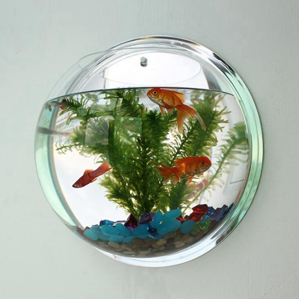 Creative Wall Hanging Acrylic Fish Bowl Home Decoration Aquariums Flowerpot  Decor Flower Vase regarding Vase and Bowl Wall Decor (Image 10 of 30)
