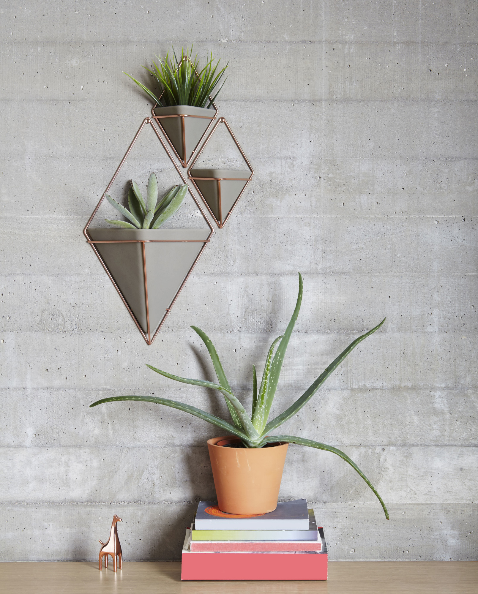Details About Umbra 470753 Trigg Two Piece Concrete Wall Mounted Planter  Set With Metal Frame Throughout 2 Piece Trigg Wall Decor Sets (Set Of 2) (Photo 28 of 30)