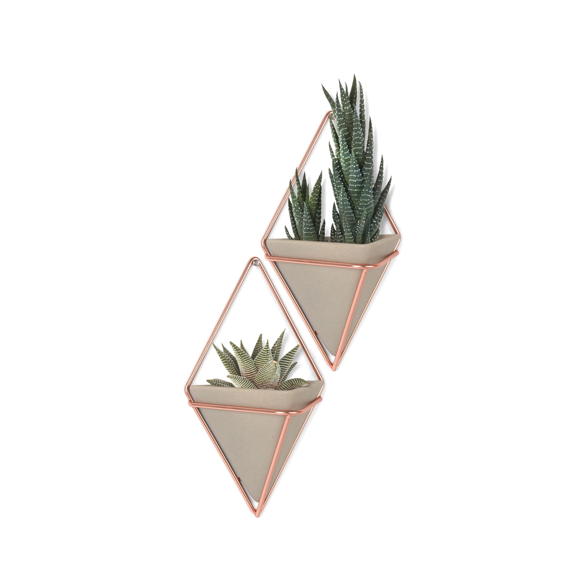 Details About Umbra 470753 Trigg Two Piece Concrete Wall Mounted Planter  Set With Metal Frame With Regard To 2 Piece Trigg Wall Decor Sets (Set Of 2) (Photo 5 of 30)