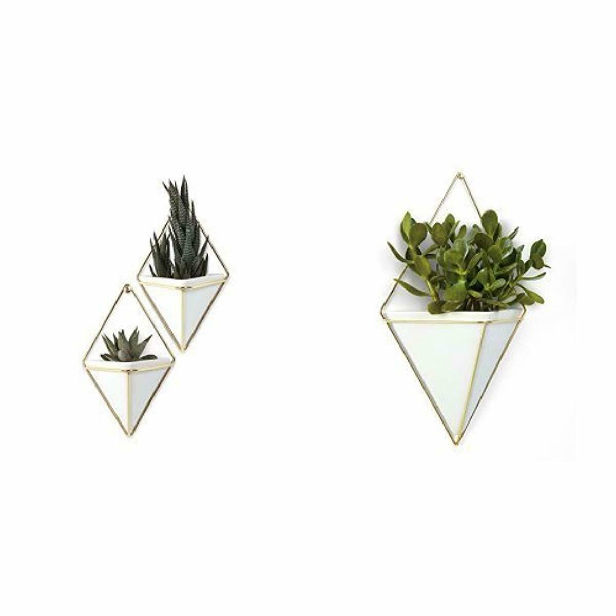 Details About Umbra Trigg Hanging Planter Vase Geometric Wall Decor  Container   Great For Su Inside Trigg Ceramic Planter Wall Decor (Photo 25 of 30)