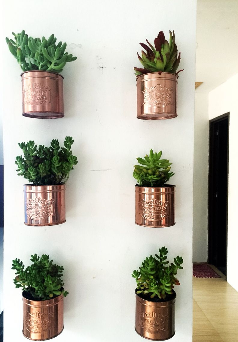 Diy Ice Cream Tin Can Wall Planters | Indoor Plants Within Farm Metal Wall Rack And 3 Tin Pot With Hanger Wall Decor (View 14 of 30)