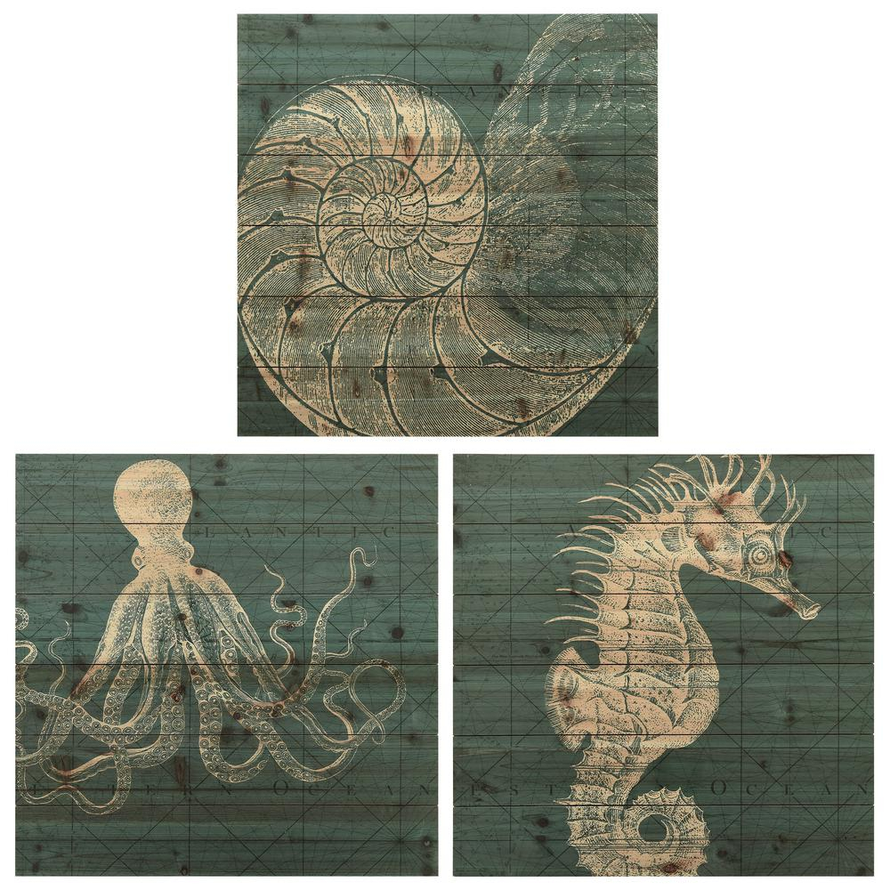 "Empire Art Direct ""coastal Menagerie A, B And C"" Arte De Throughout Wall Decor By World Menagerie (View 11 of 30)"