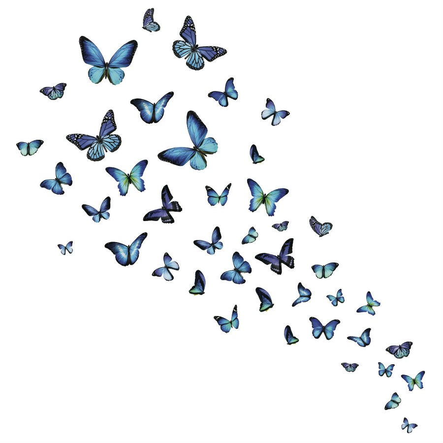 Fine Décor 'Mariposa Butterfly' Wall Art Kit within Mariposa 9 Piece Wall Decor (Image 11 of 30)