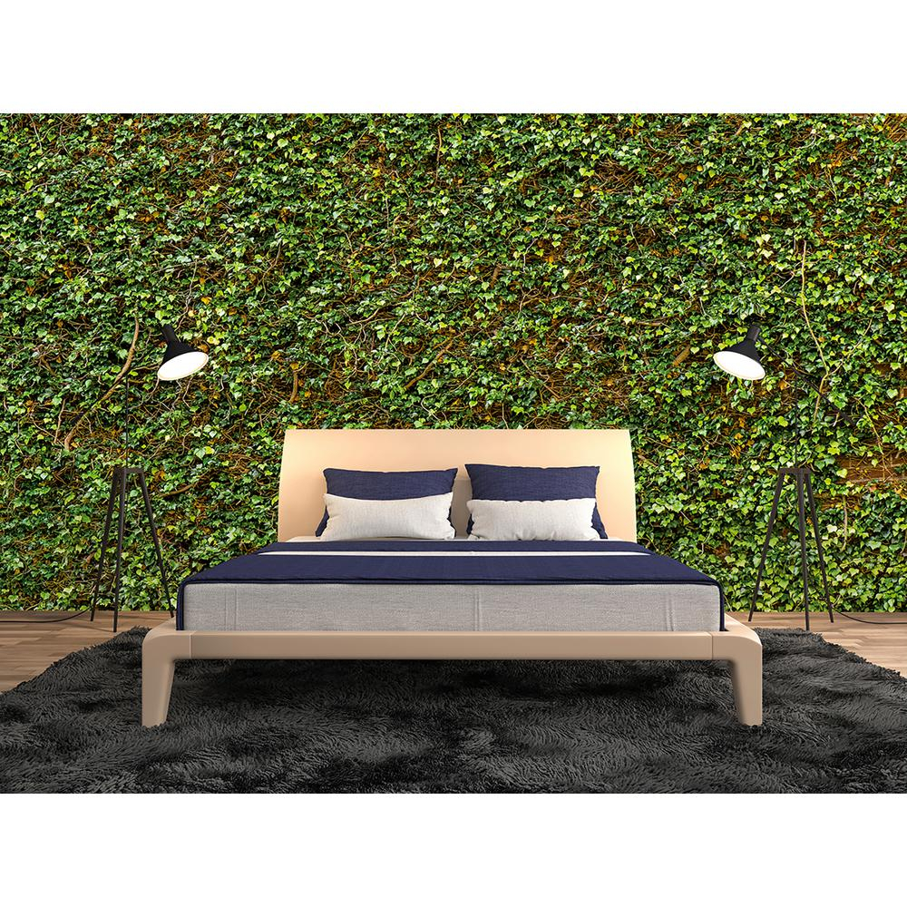 Ivy Nature Wall Mural For Nature Metal Sun Wall Decor (View 19 of 30)